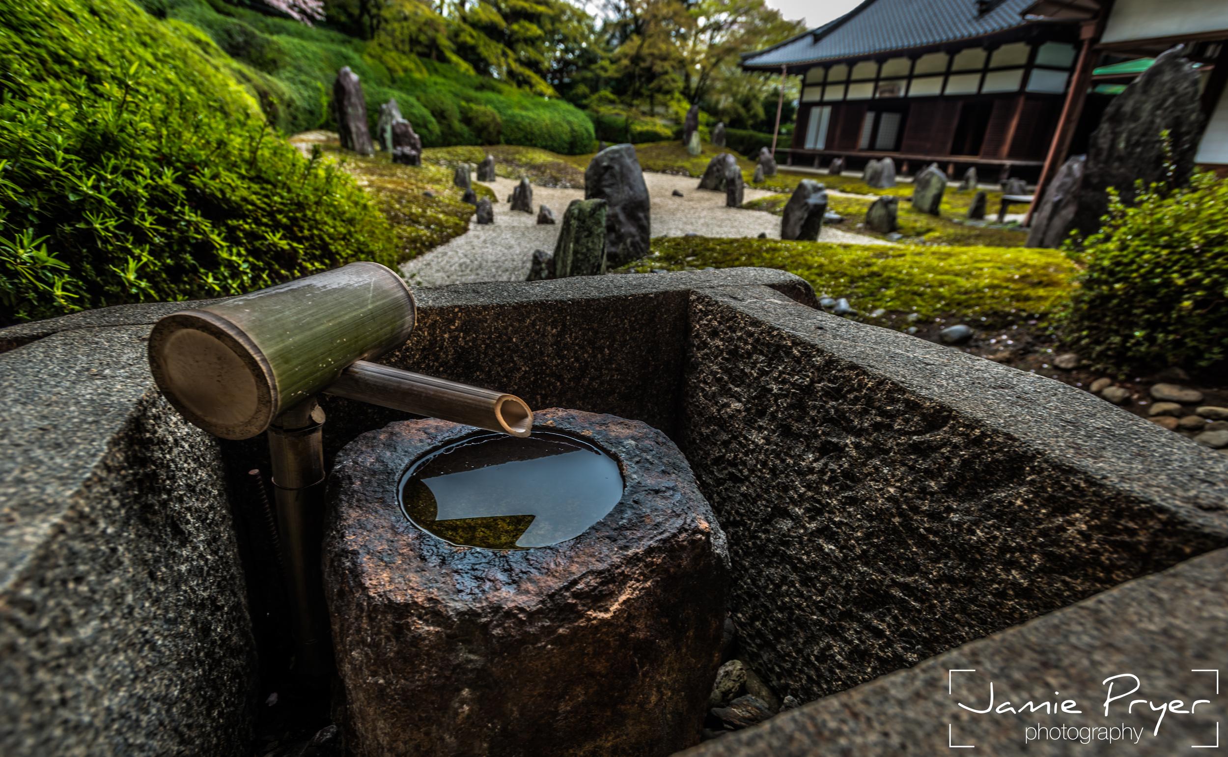The Tranquil Garden2-2.jpg