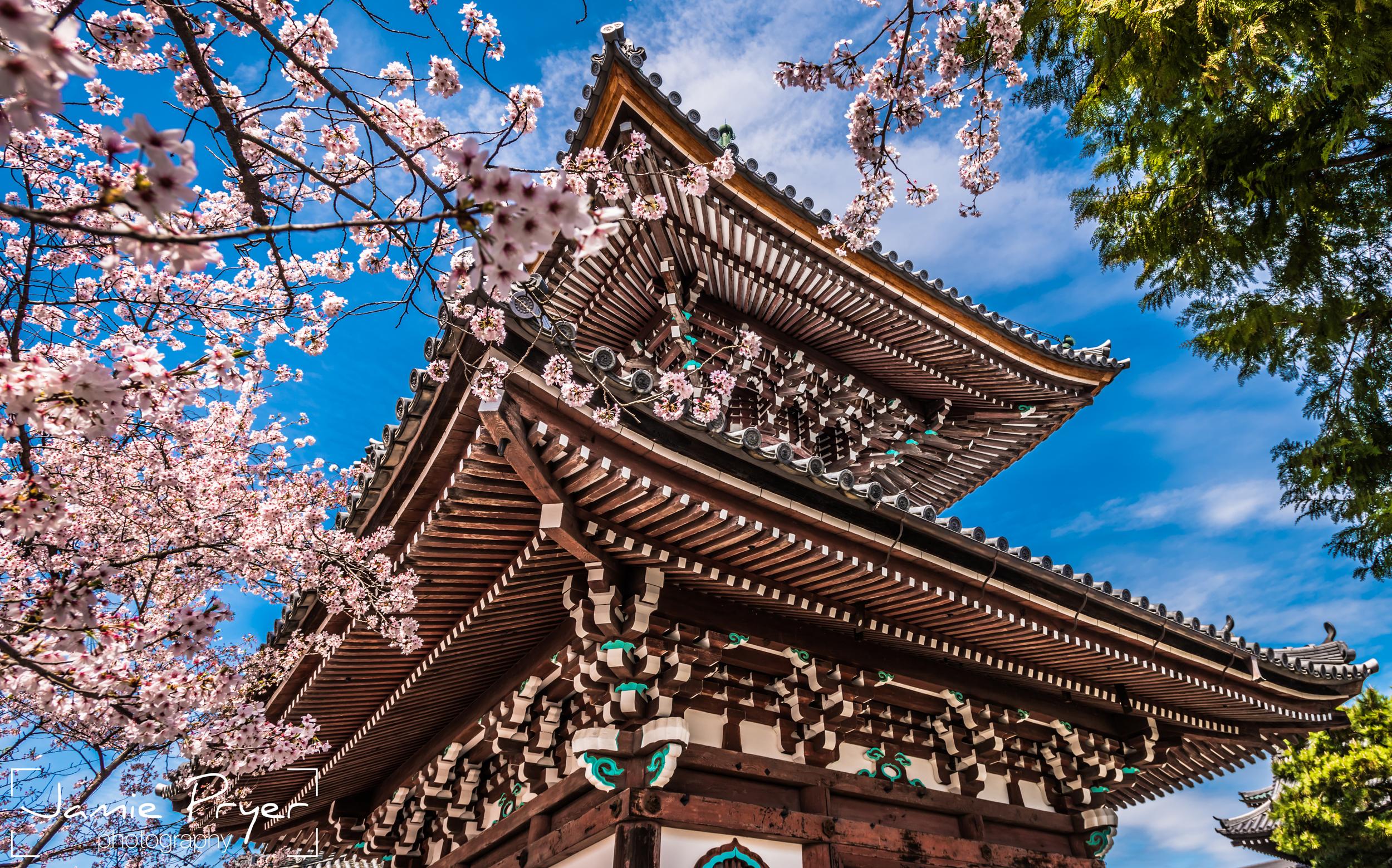 Japanese Architecture.jpg