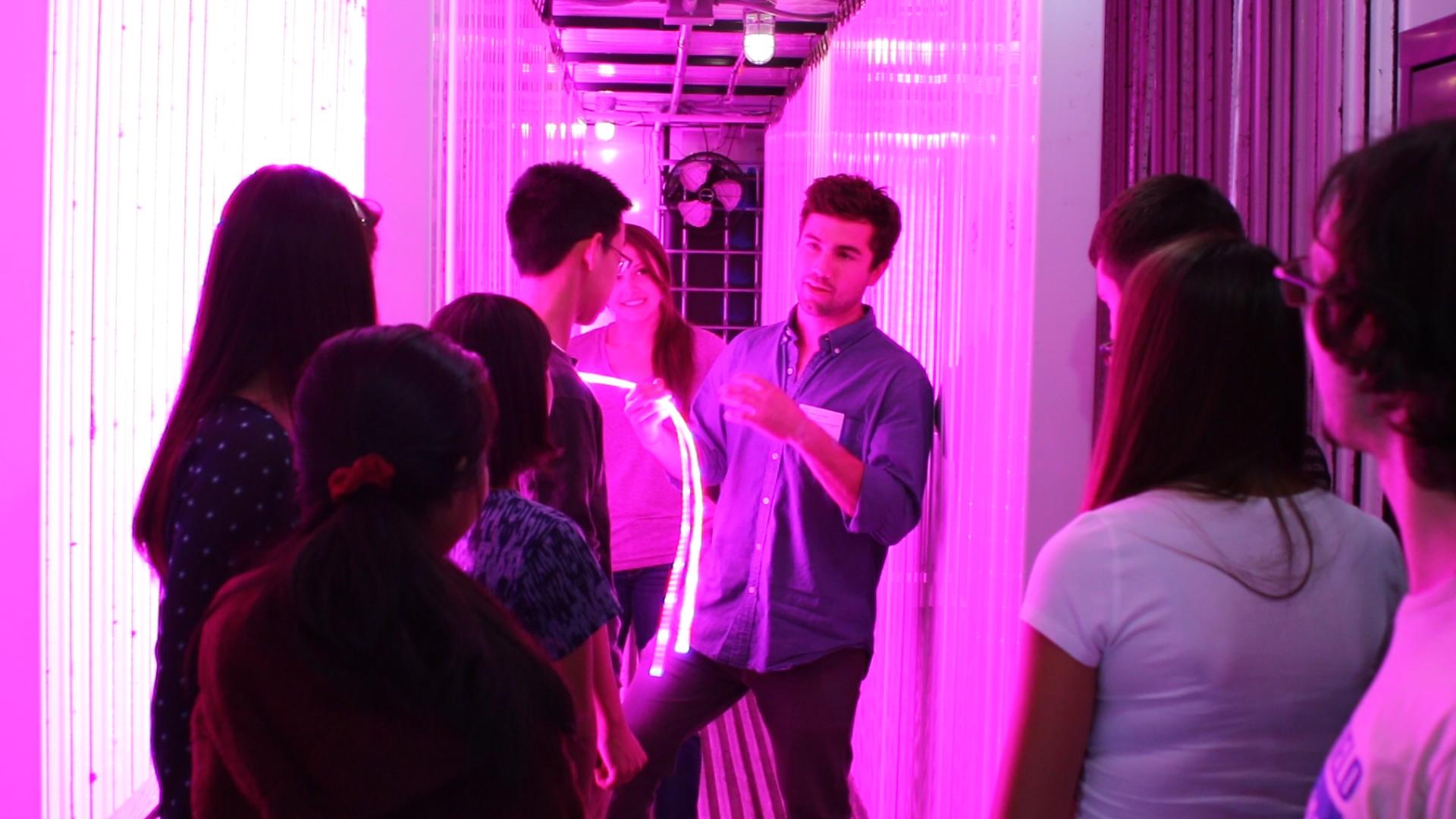 Boston-Latin-Students-Learn-Indoor-Growing-Technology