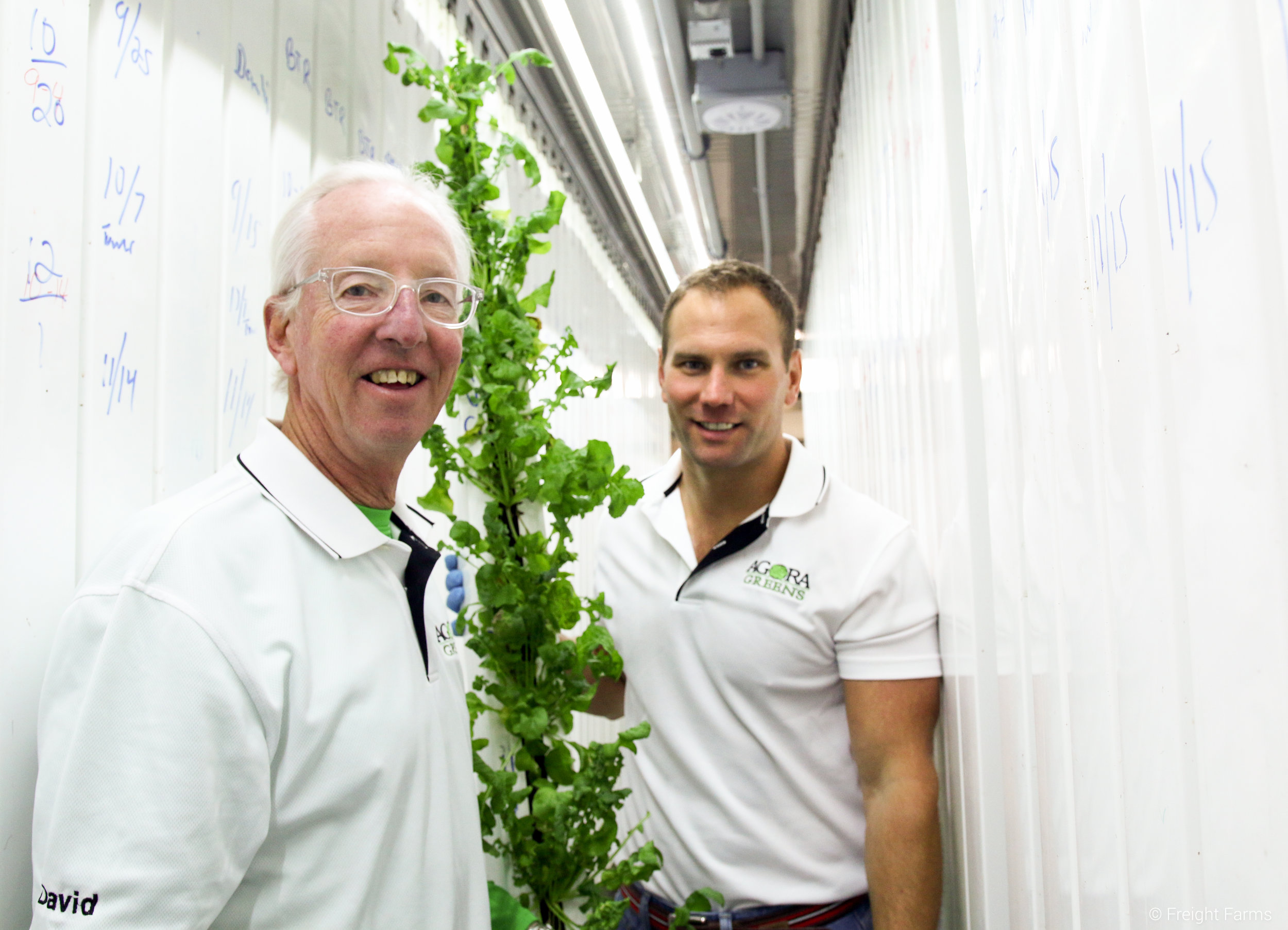 David and Ian with a column of spicy arugula.