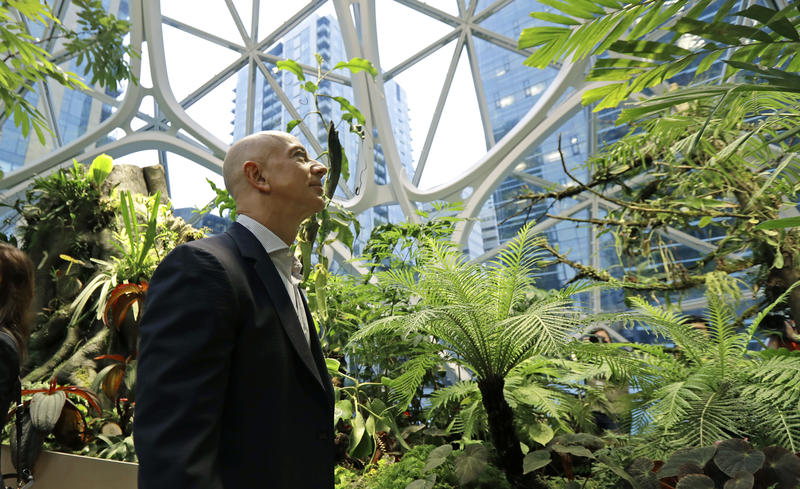 Plant Spheres in Seattle at Amazon Headquarters. Photo: KNKX