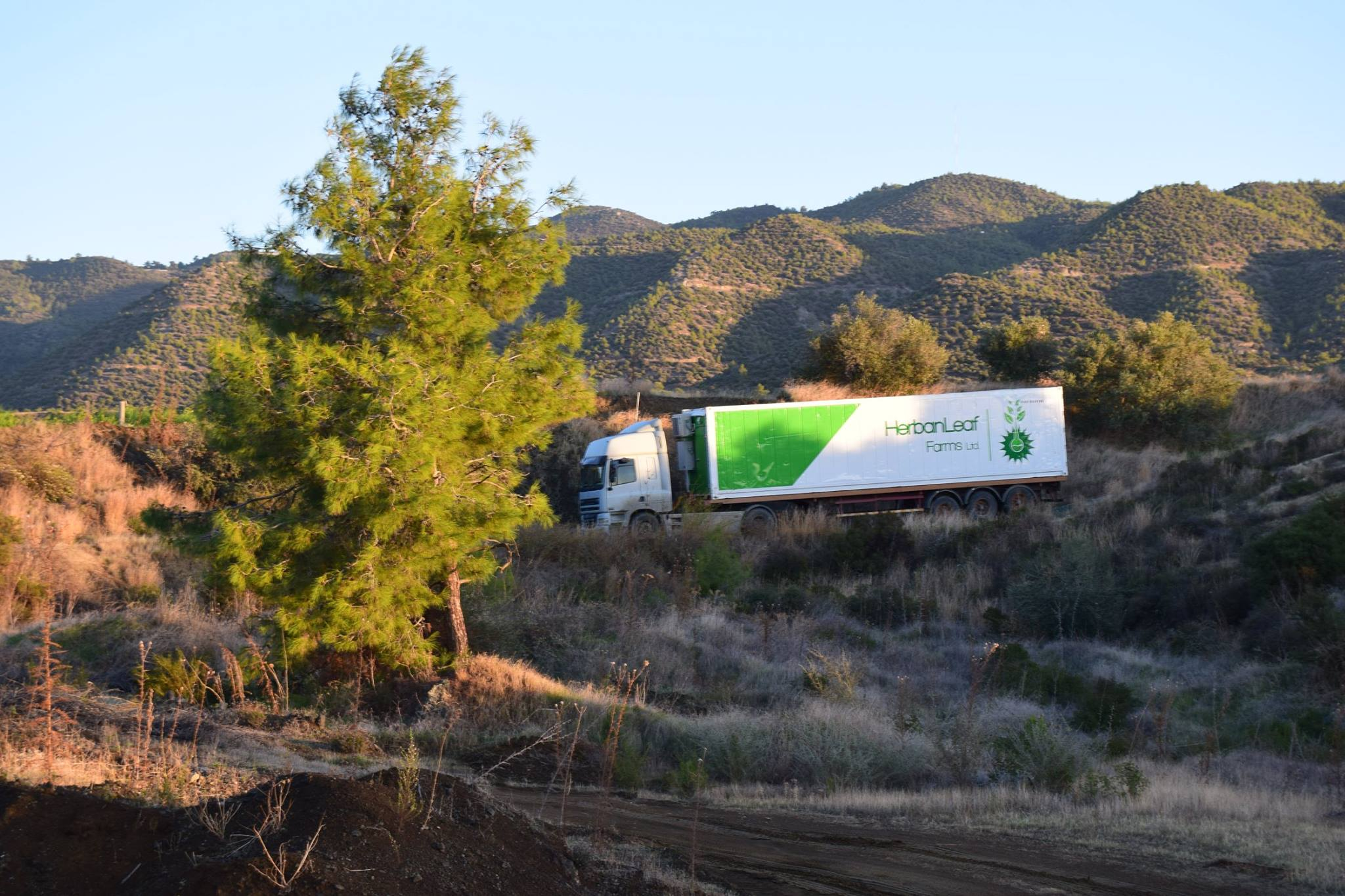 Farm delivery in Cyprus for HerbanLeaf Farms