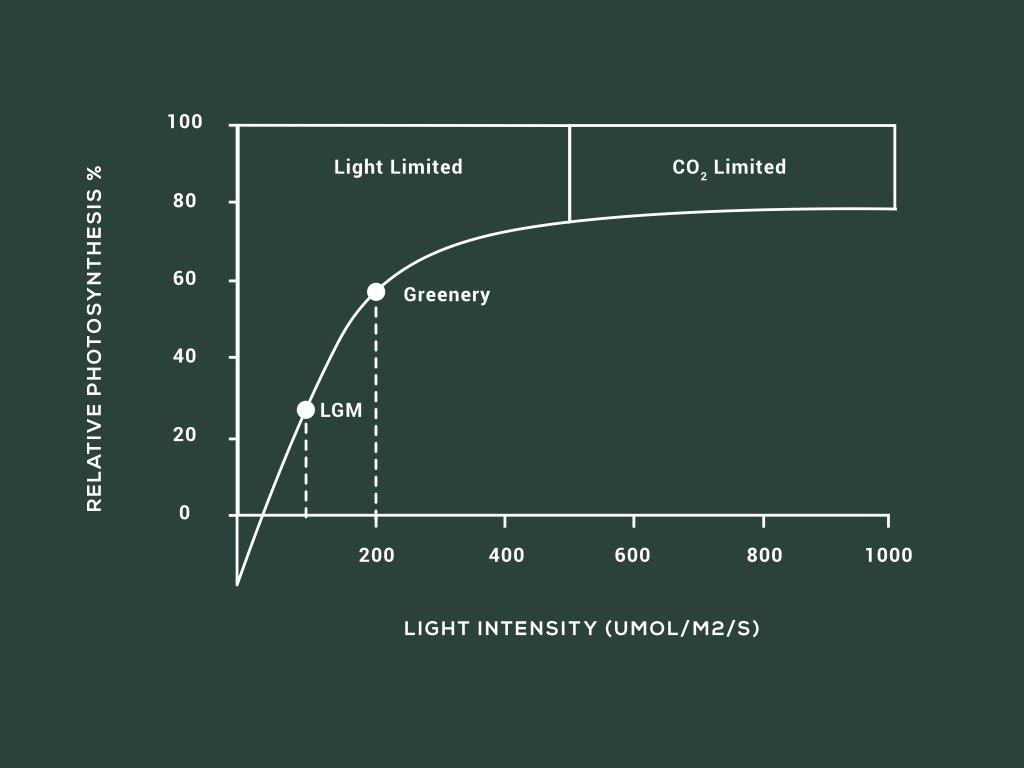 Greenery-PPFD-Chart