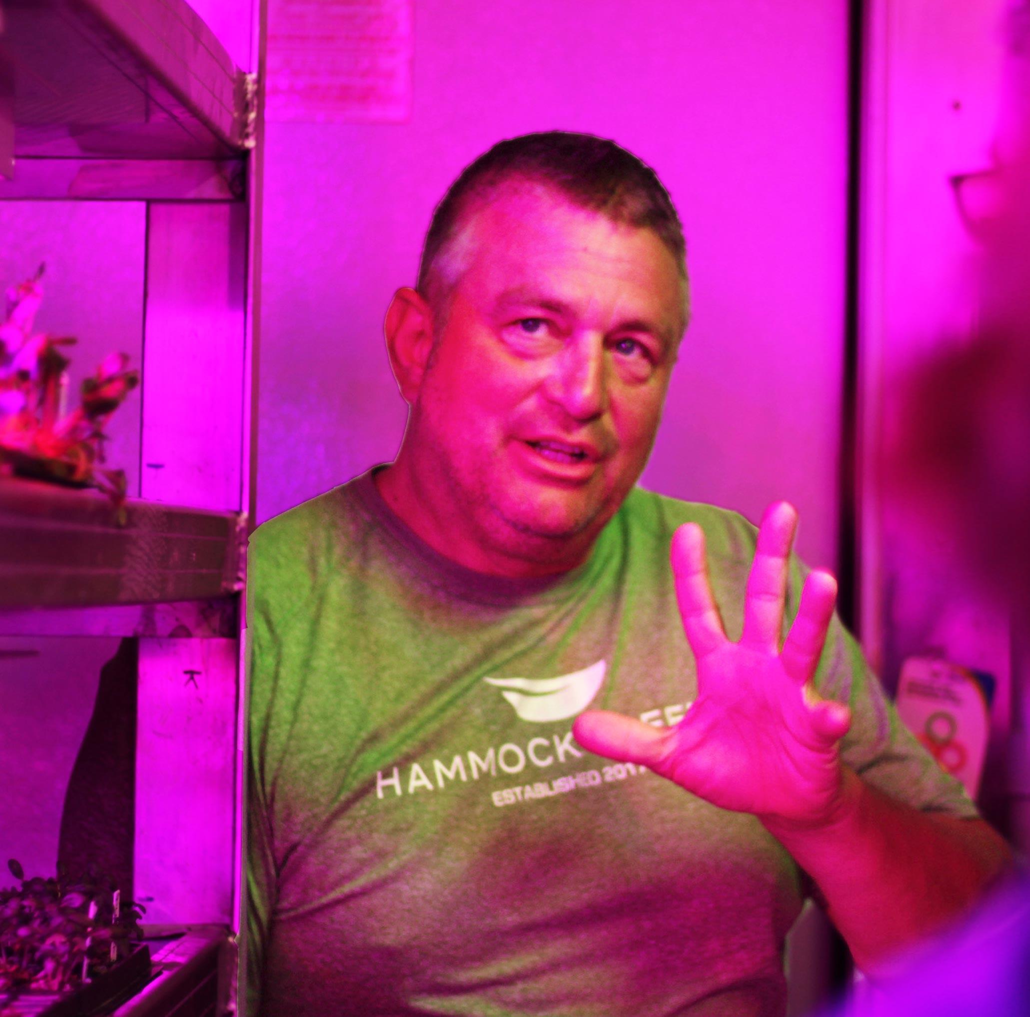 Hammock-Greens-Thomas.jpg