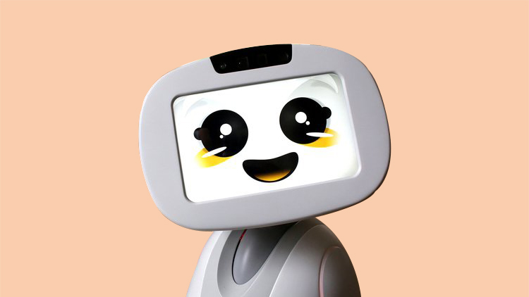 Buddy - Your Family's Social Robot