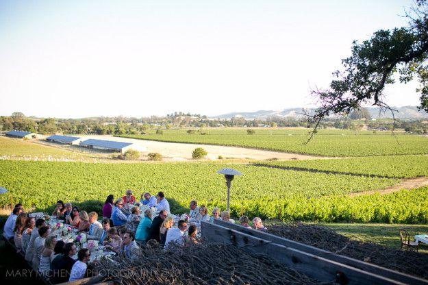 Dinner over vineyard.jpg