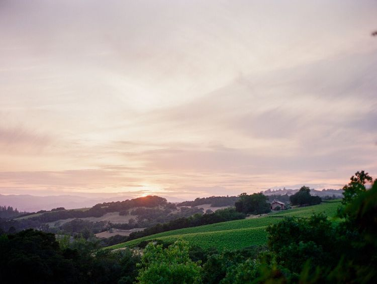 Chalk-Hill-Estate-Lrelyea-Events-Lori-Paladino-Photography-10