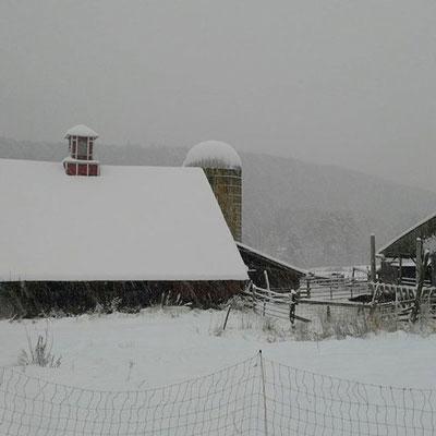 barn-snow2.jpg