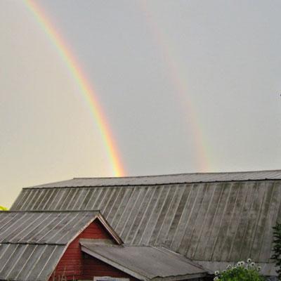 double-rainbow2.jpg