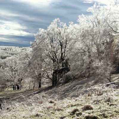 ice-storm-2.jpg