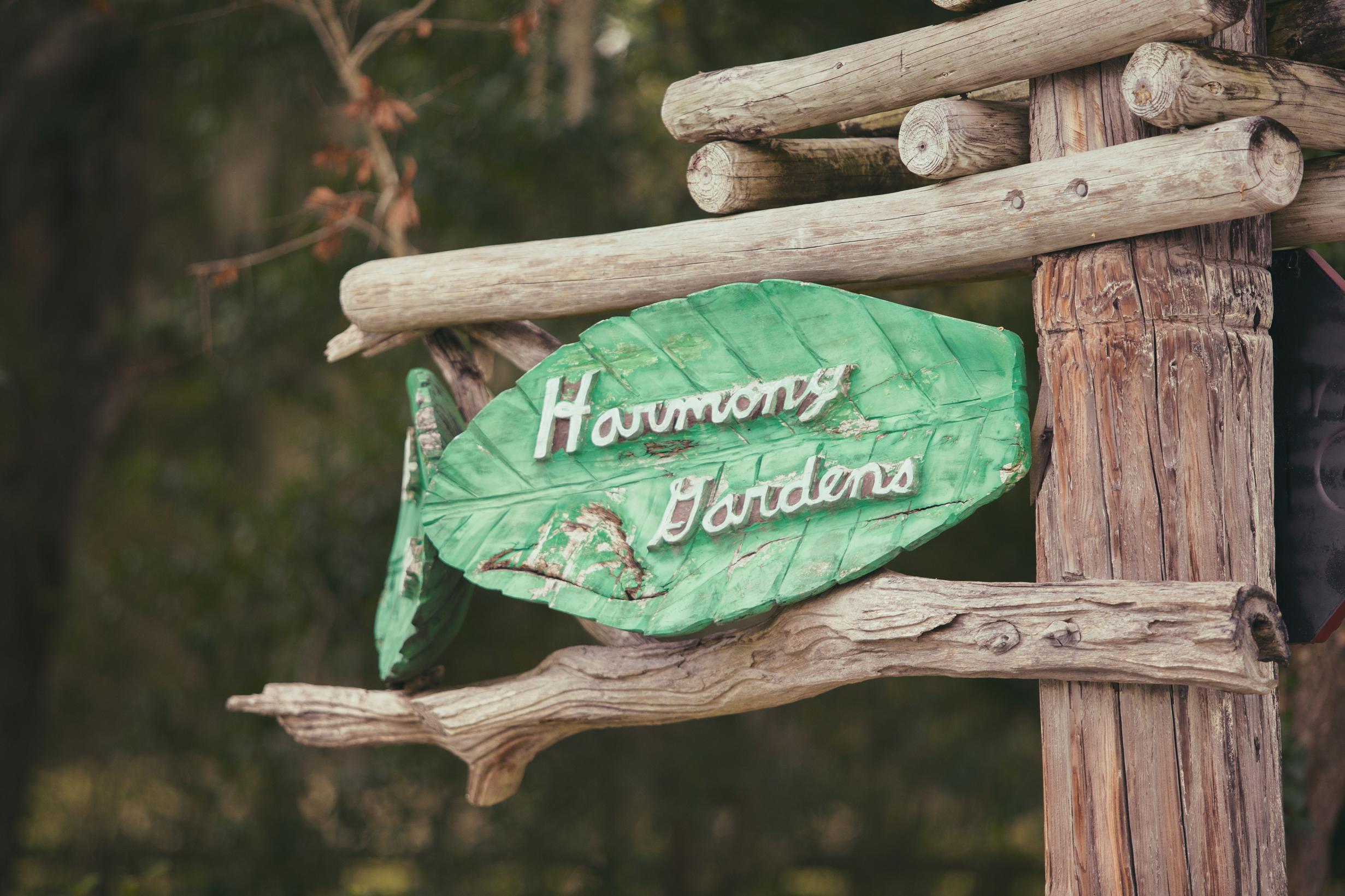 harmony-gardens-wedding-chamber-photography-moments-antoine-hart-13.jpg