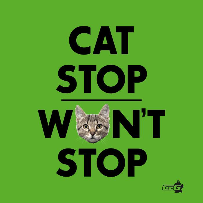 cat stop.jpg