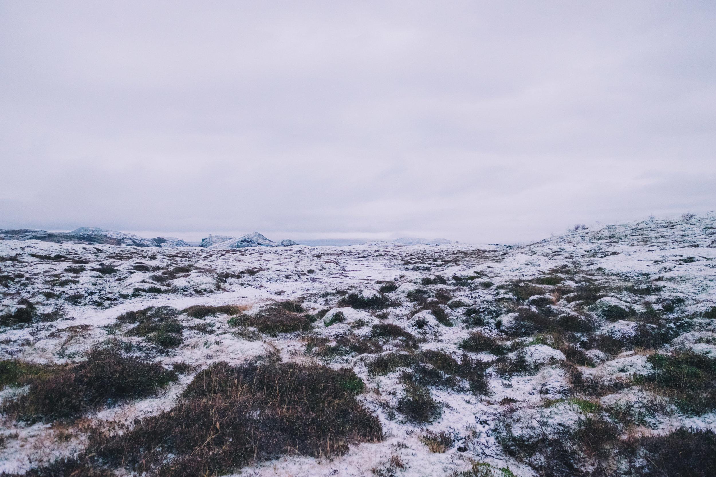 Ion Landscape.jpg