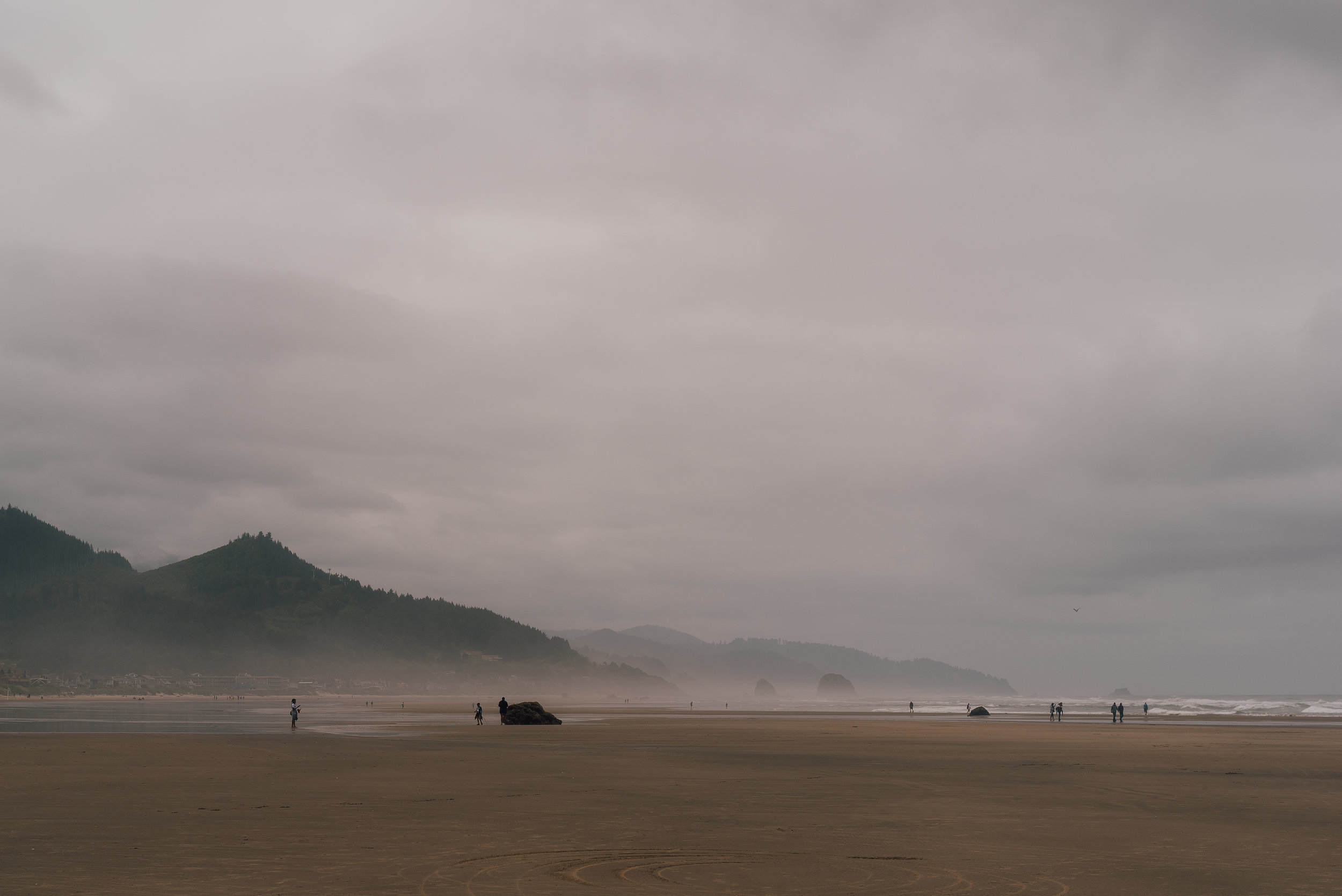 Cannon Beach Mist-2913.jpg