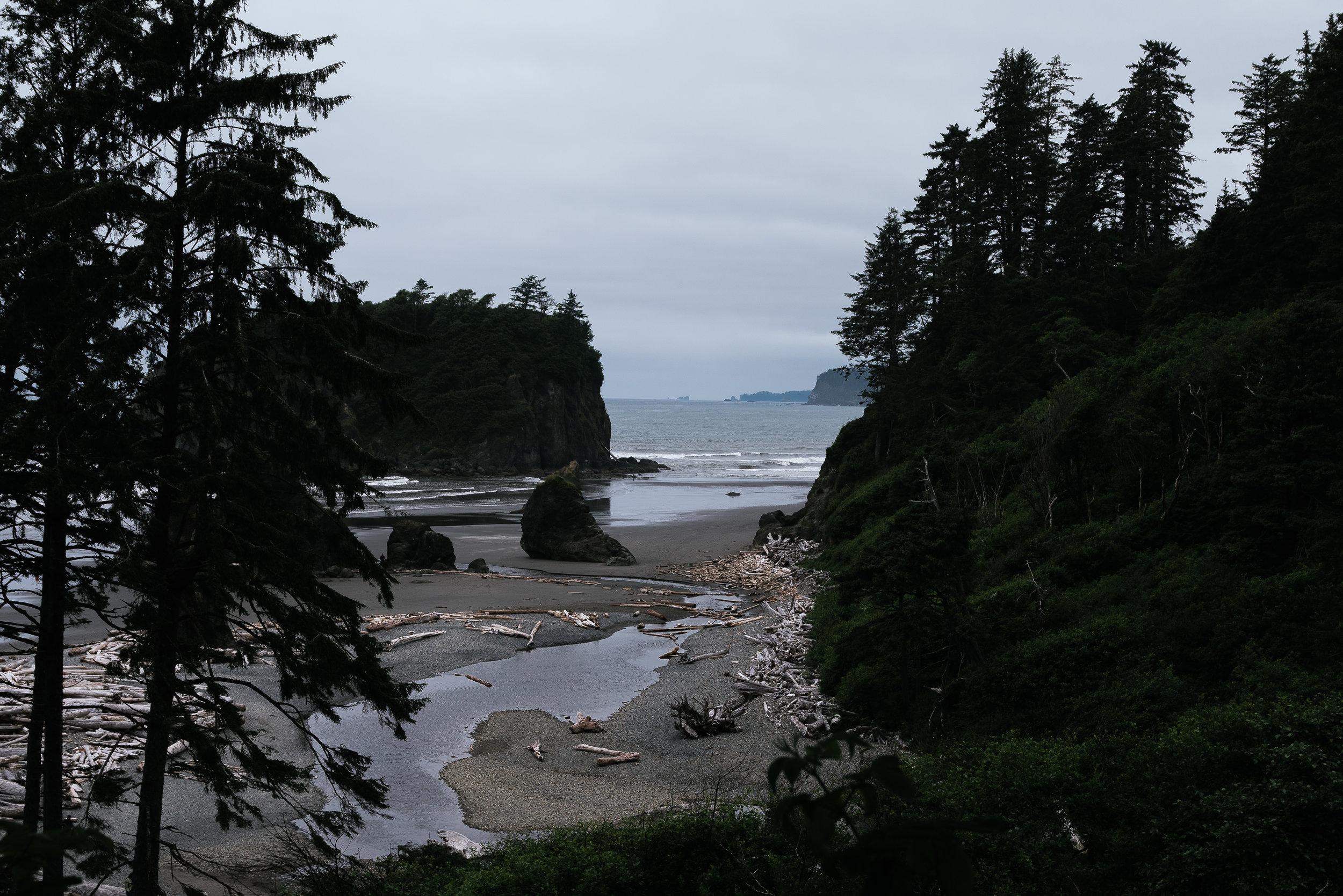 Ruby Beach-3263.jpg