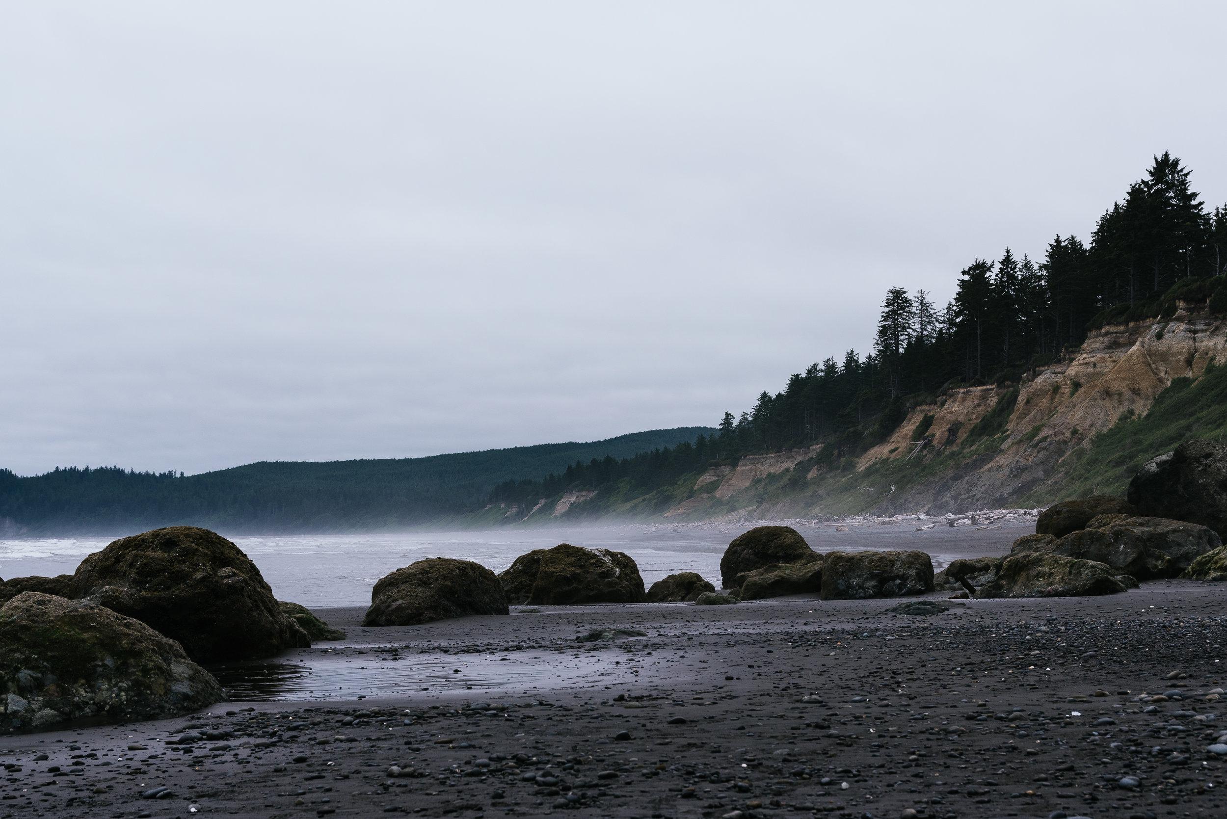 Misty Shore-3314.jpg