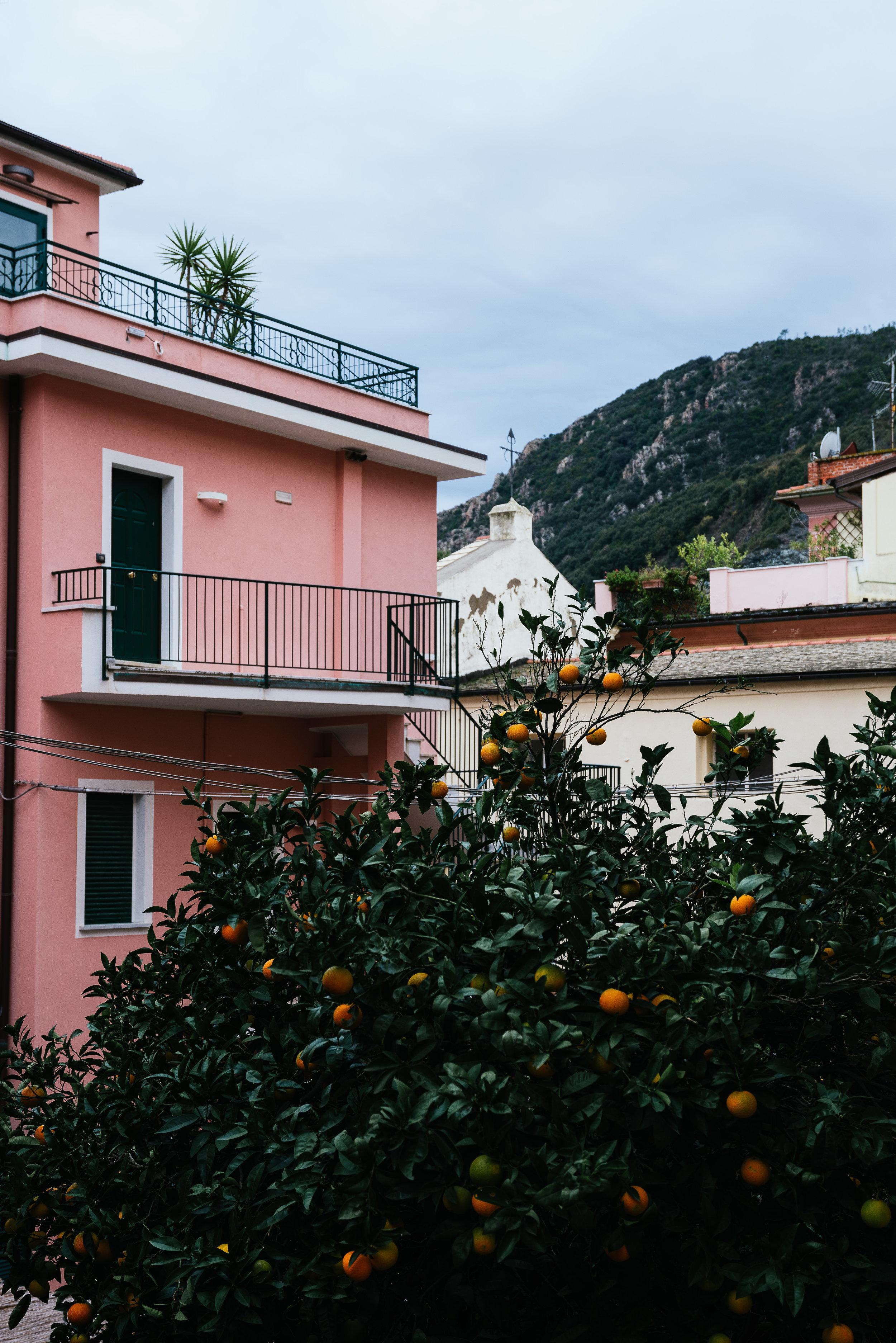 Vernazza Italy Oranges.jpg