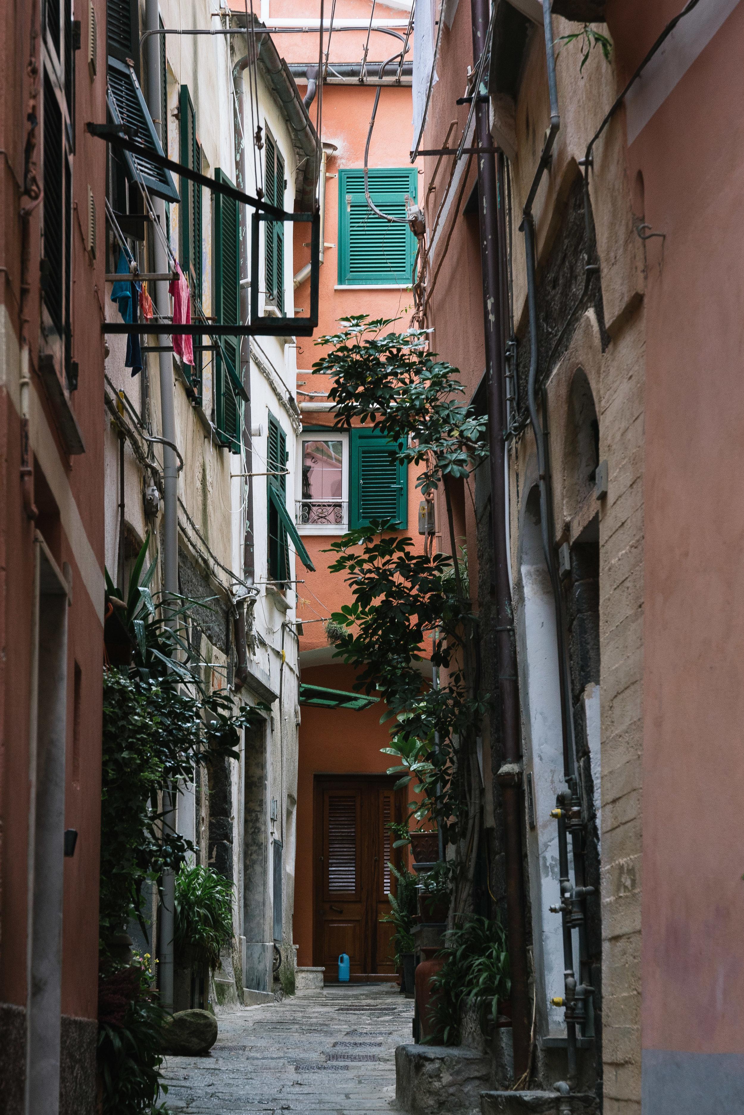 Vernazza Alleyway Two.jpg