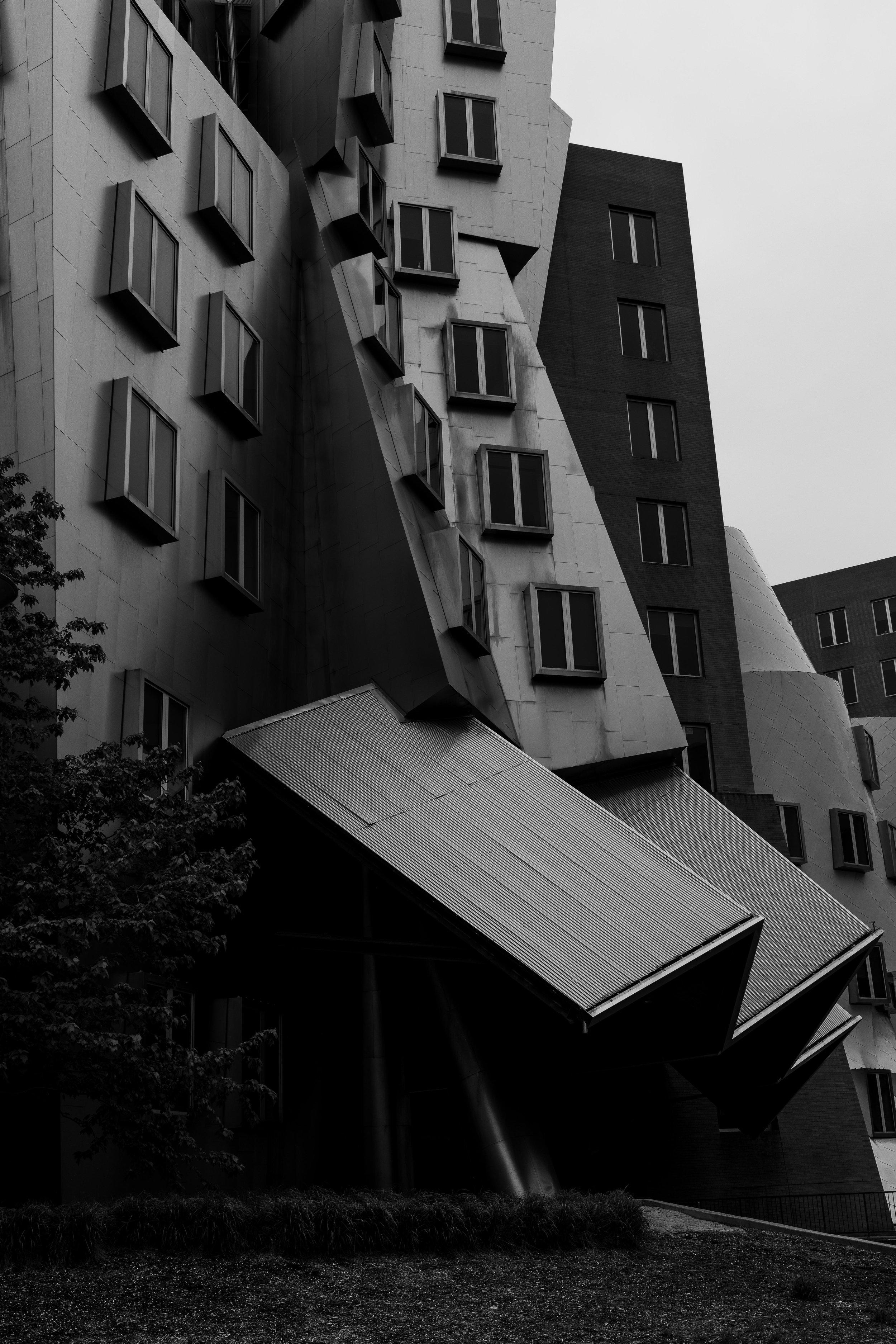 MIT two.jpg