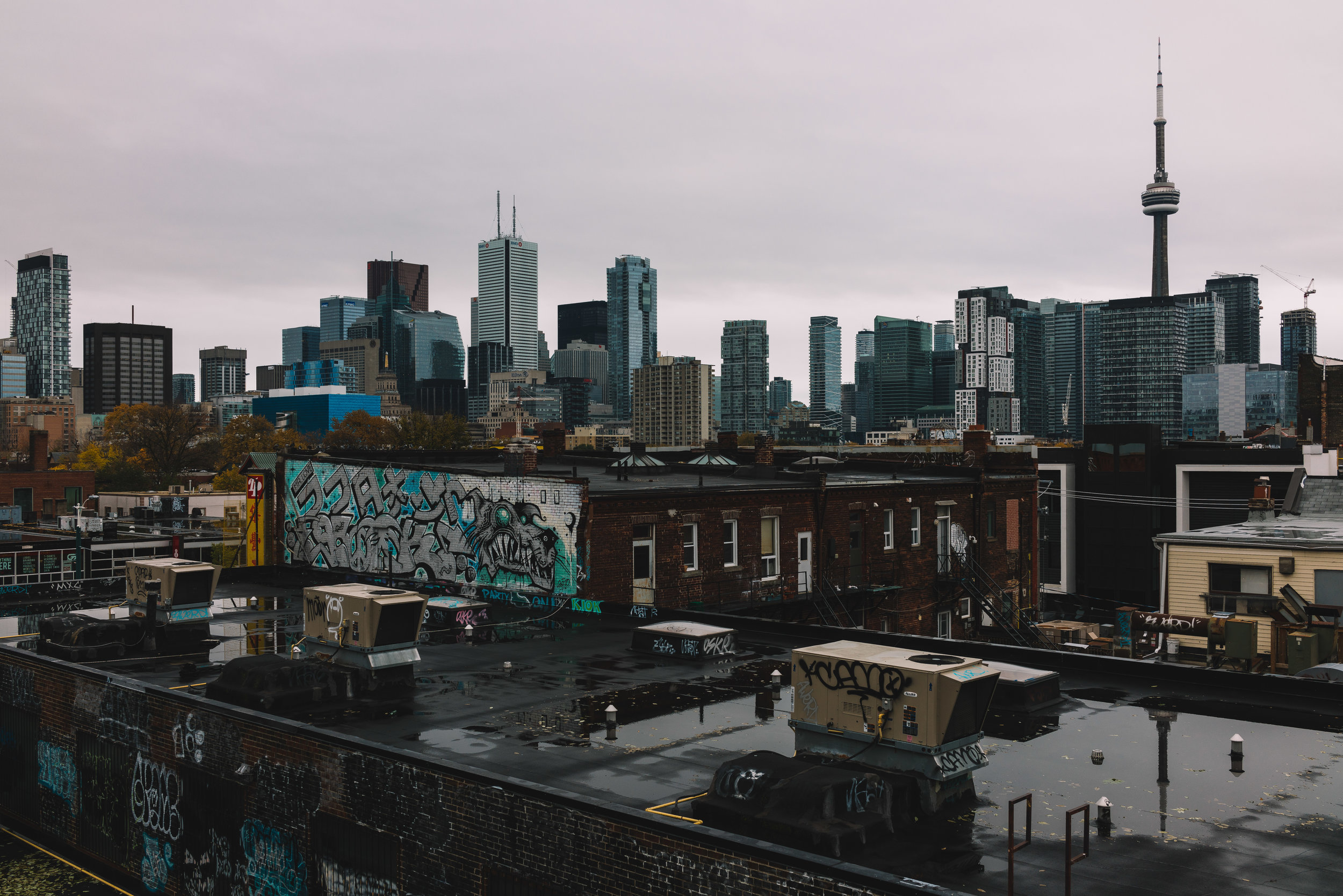 Skyline from Kensington Market.jpg