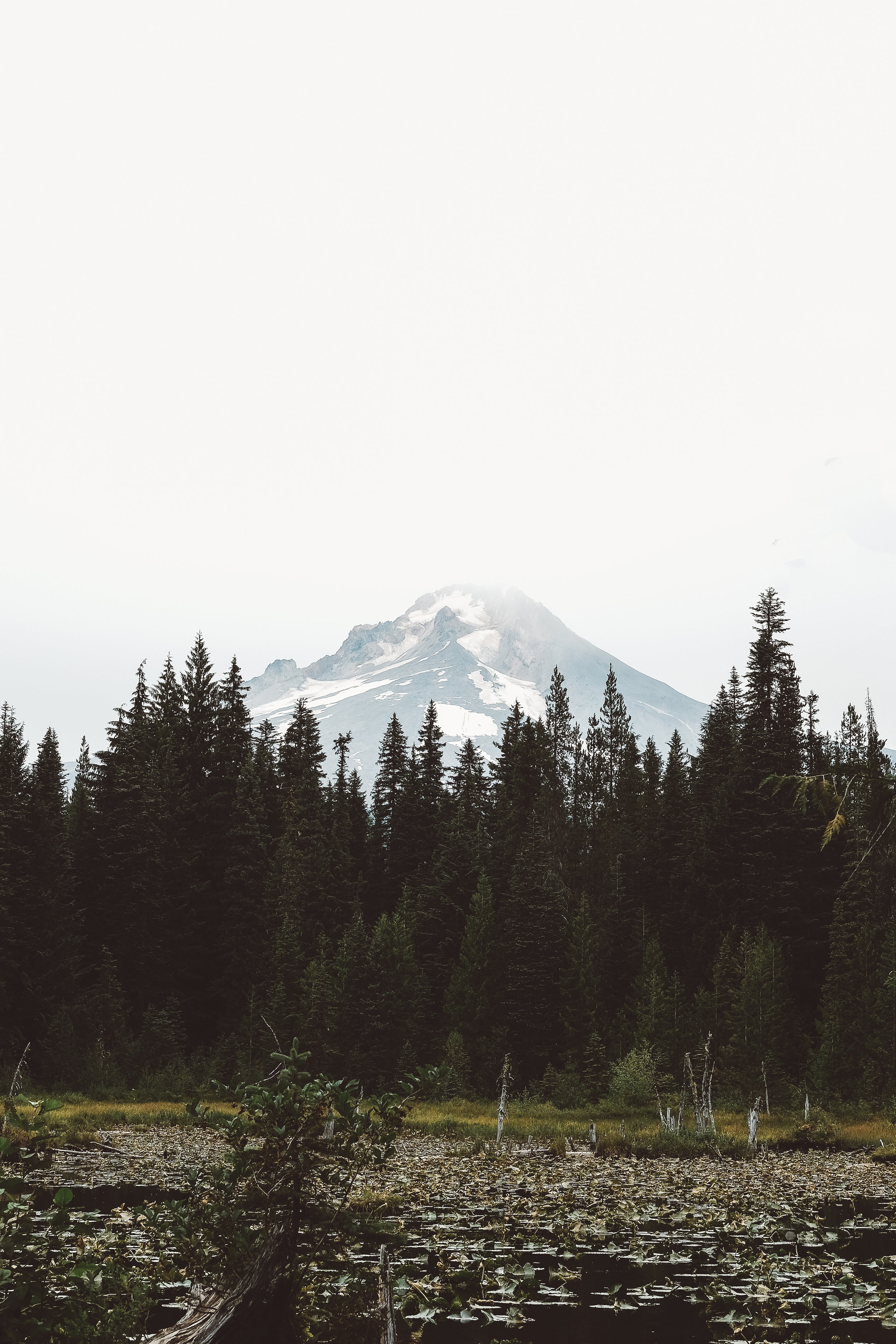 Hazy Mount Hood.jpg