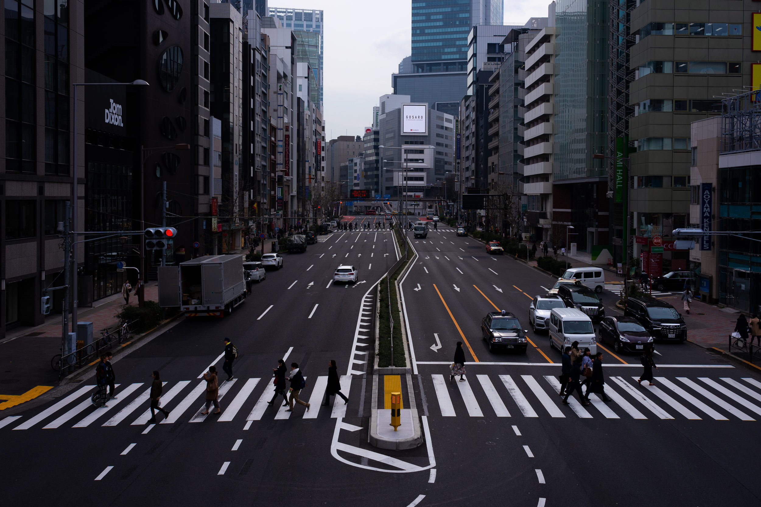 Tokyo Street Crossing.jpg