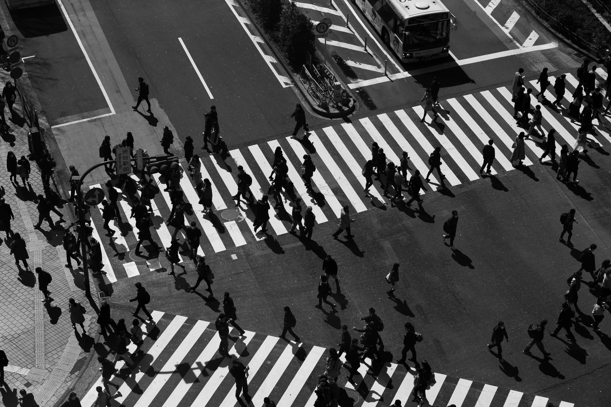 Shibuya Crossing.jpg