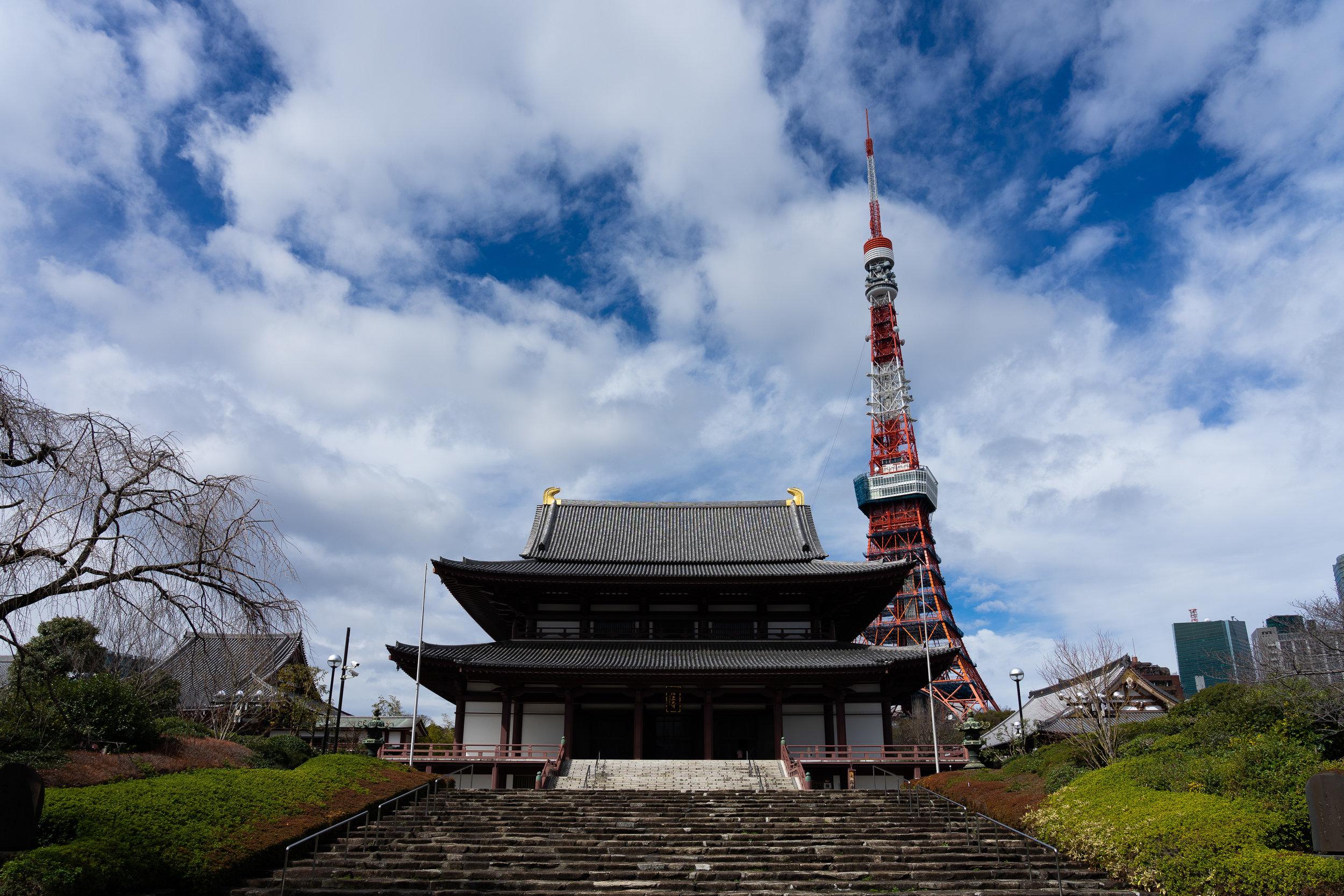 Tokyo Shrine + Tower.jpg