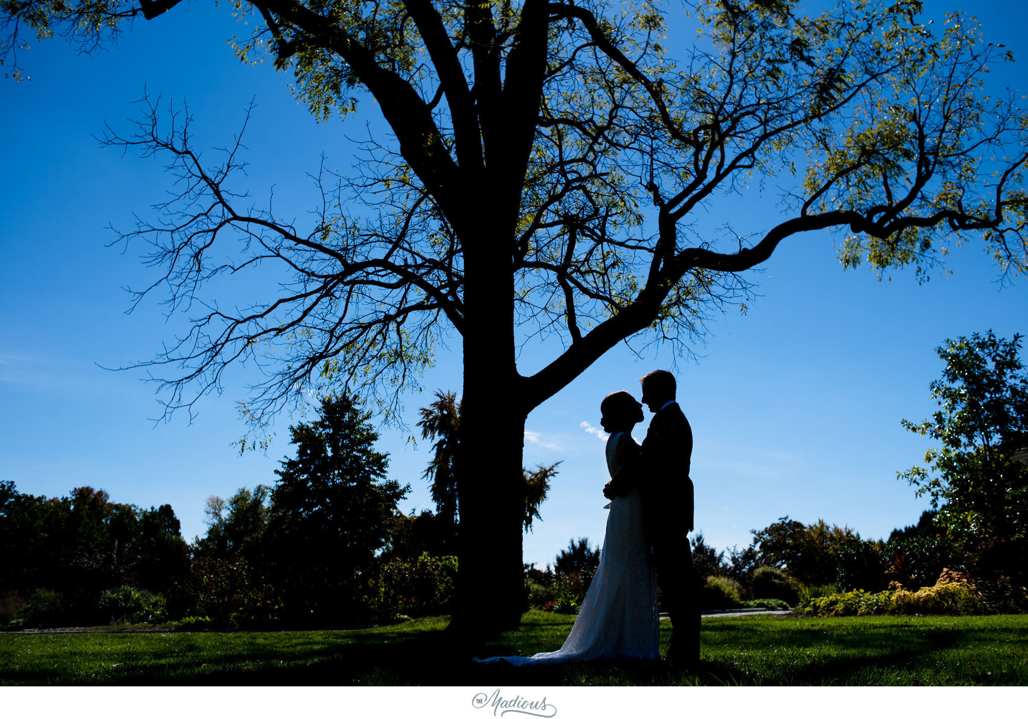 Cylburn Arboretum wedding photojournalism bride groom silhouette