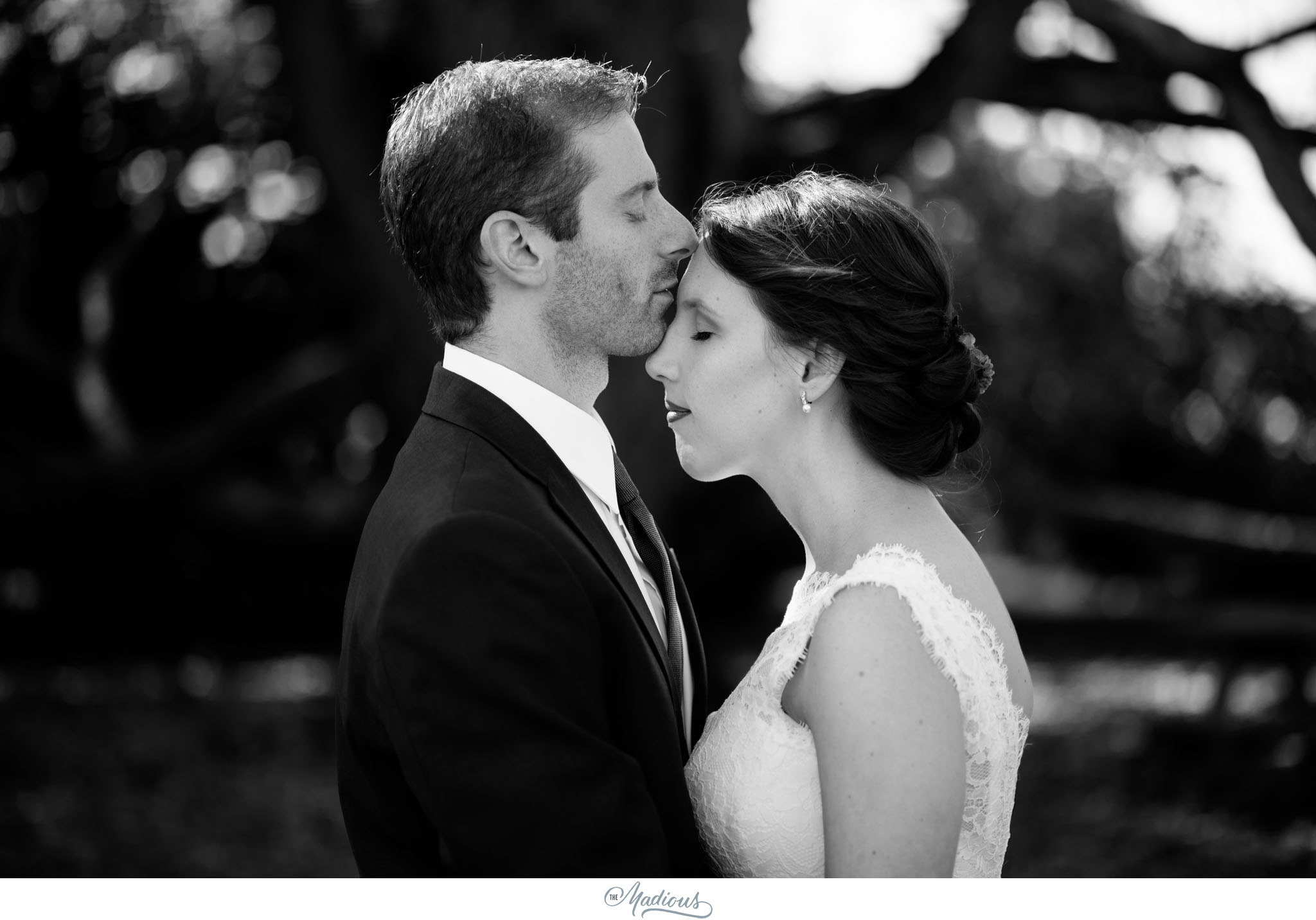 Cylburn Arboretum wedding photojournalism bride groom portraits love