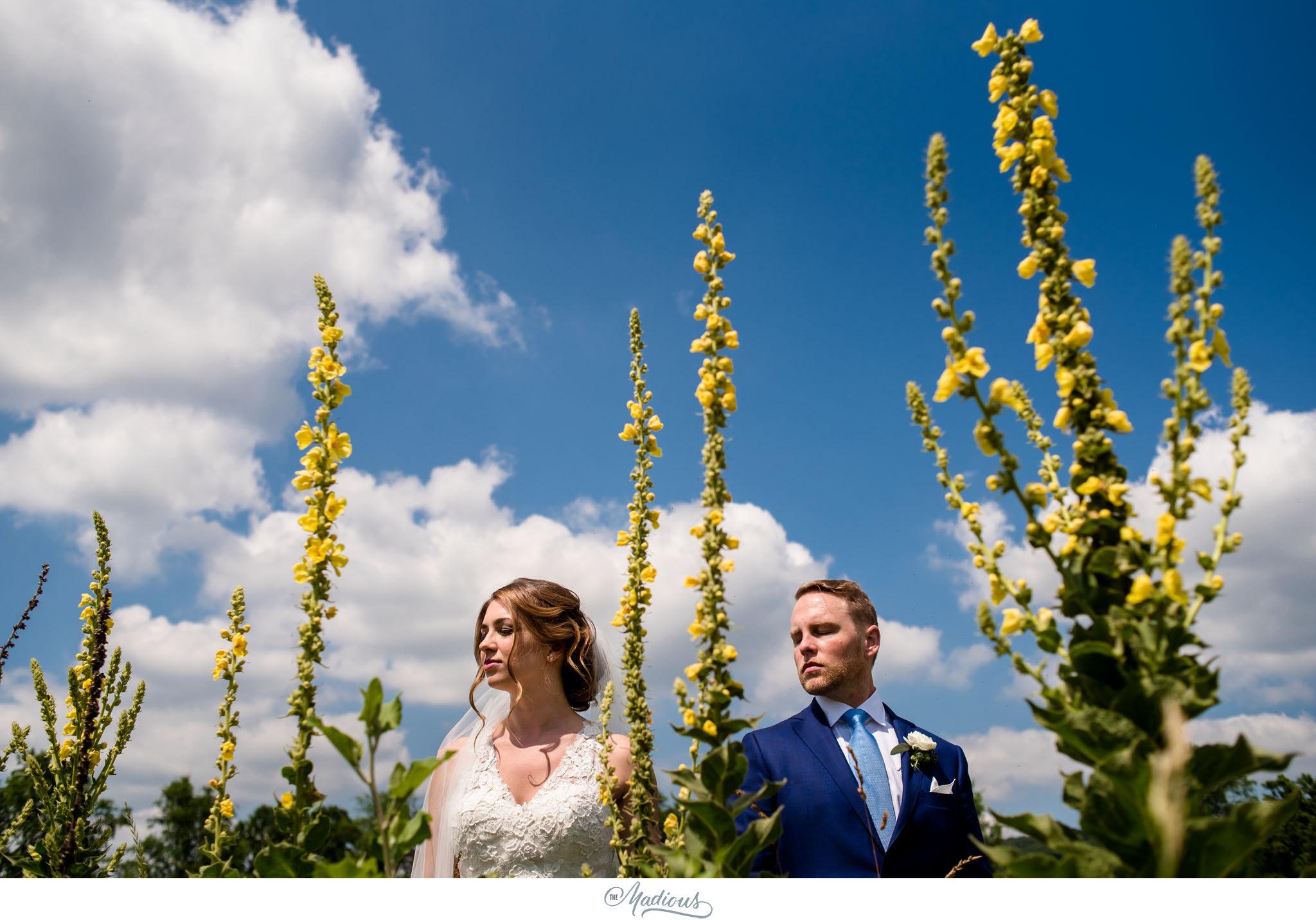 Virginia_Farm_Wedding_01.JPG