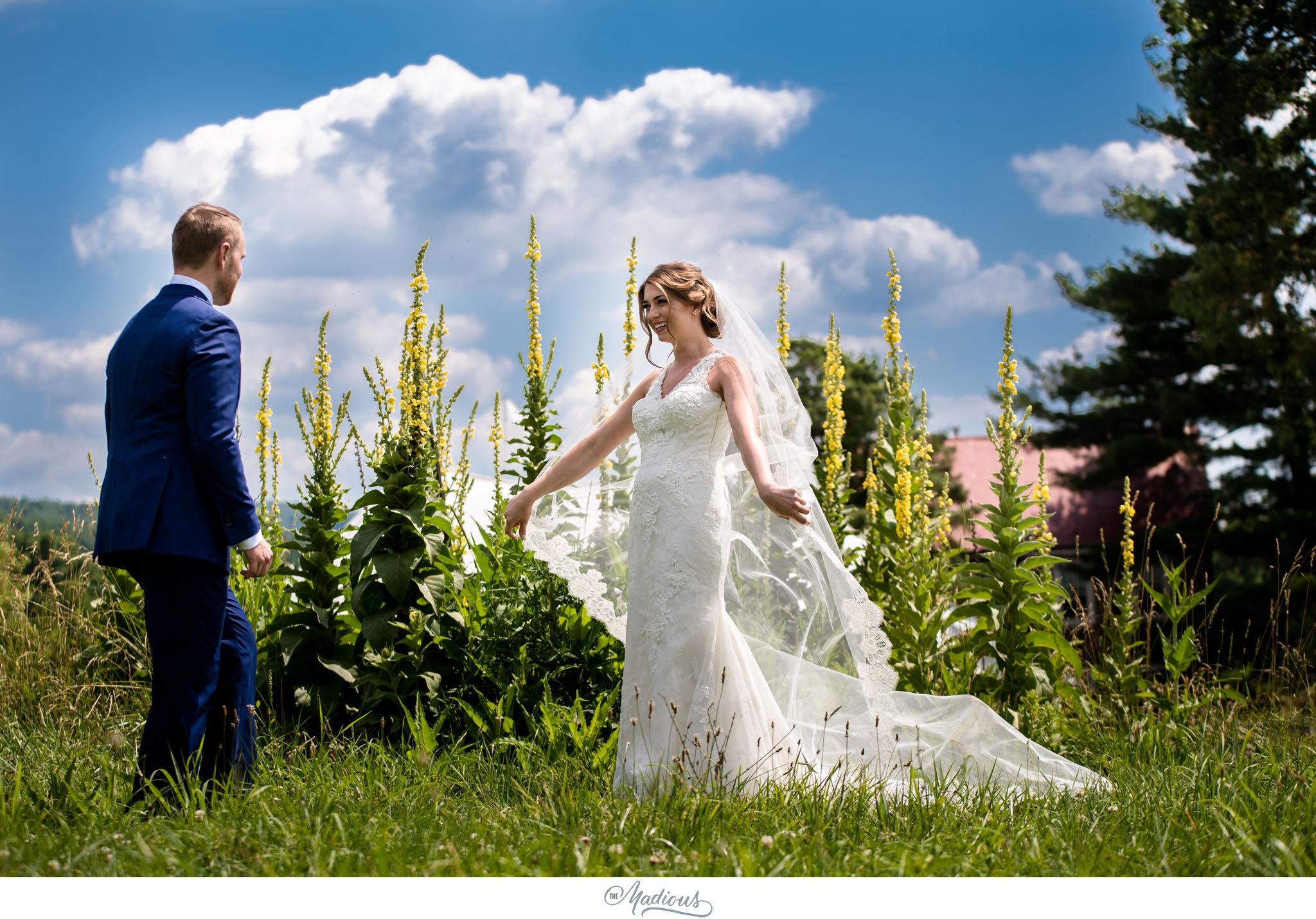 Virginia_Farm_Wedding_15.JPG