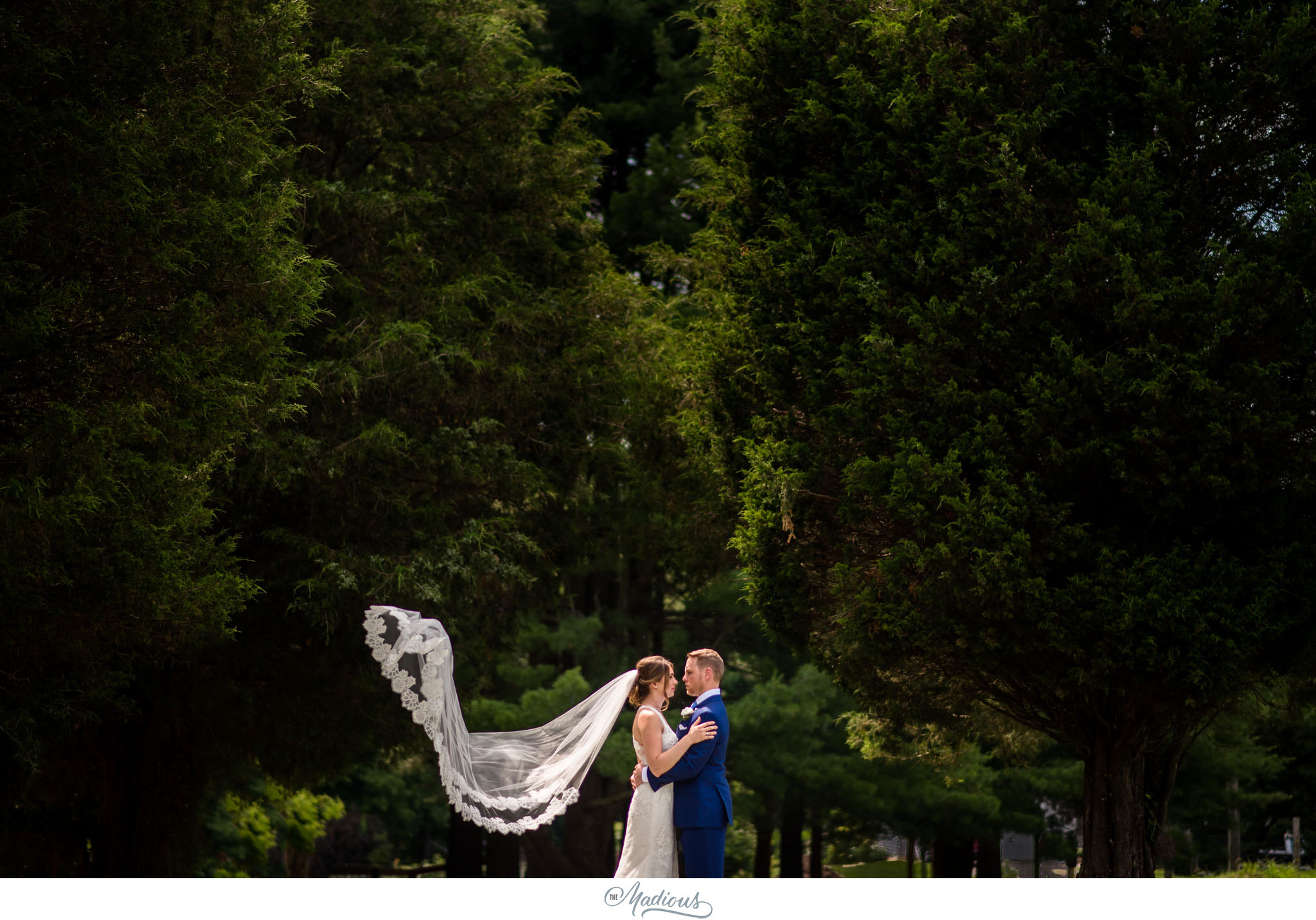 Virginia_Farm_Wedding_19.JPG