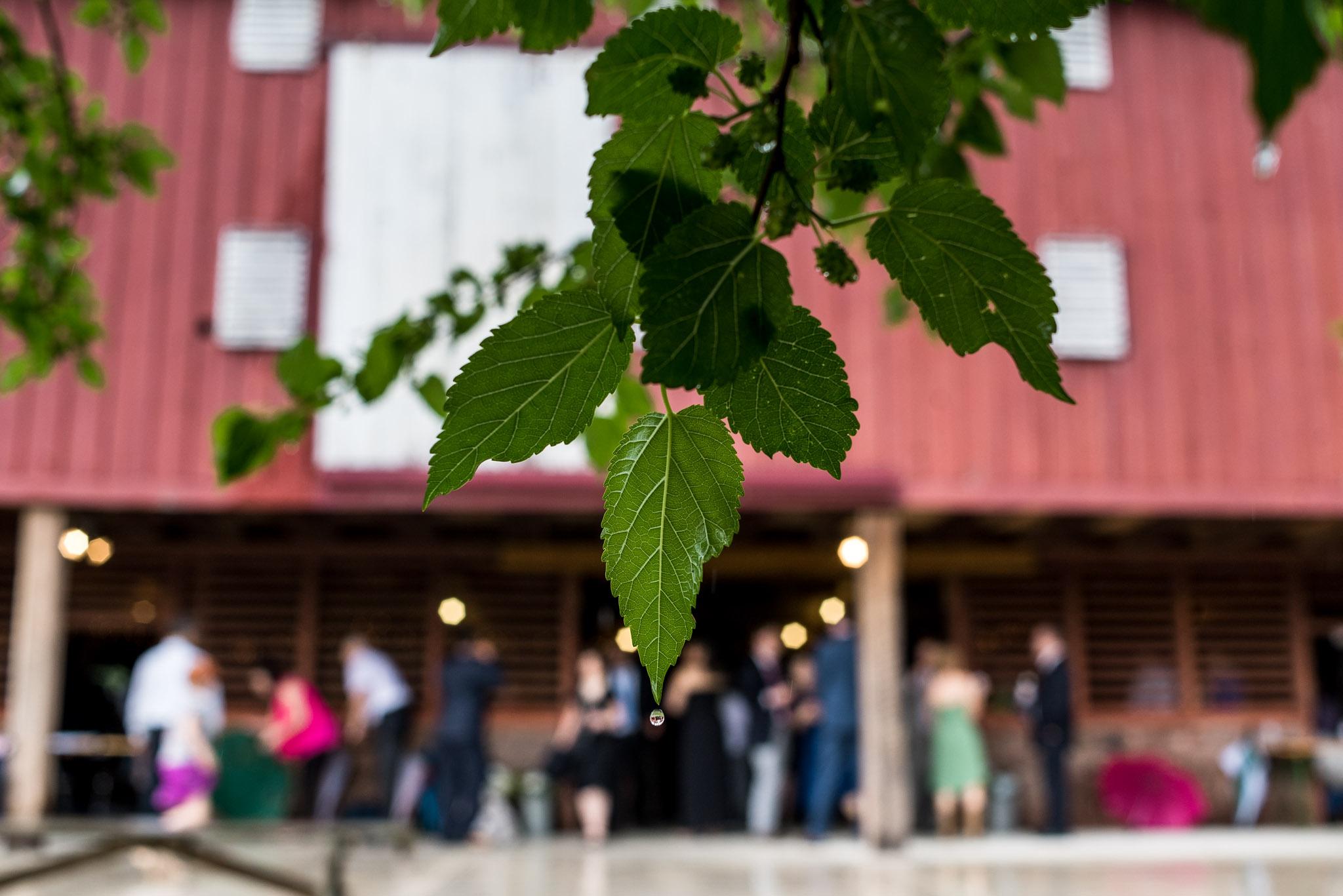 Rockland Farms Maryland Wedding 0146.JPG