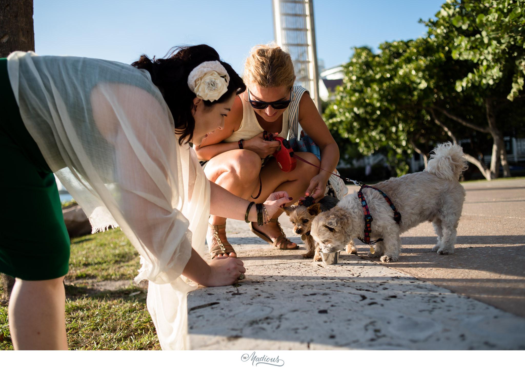 South Beach Miami Wedding 0029.JPG