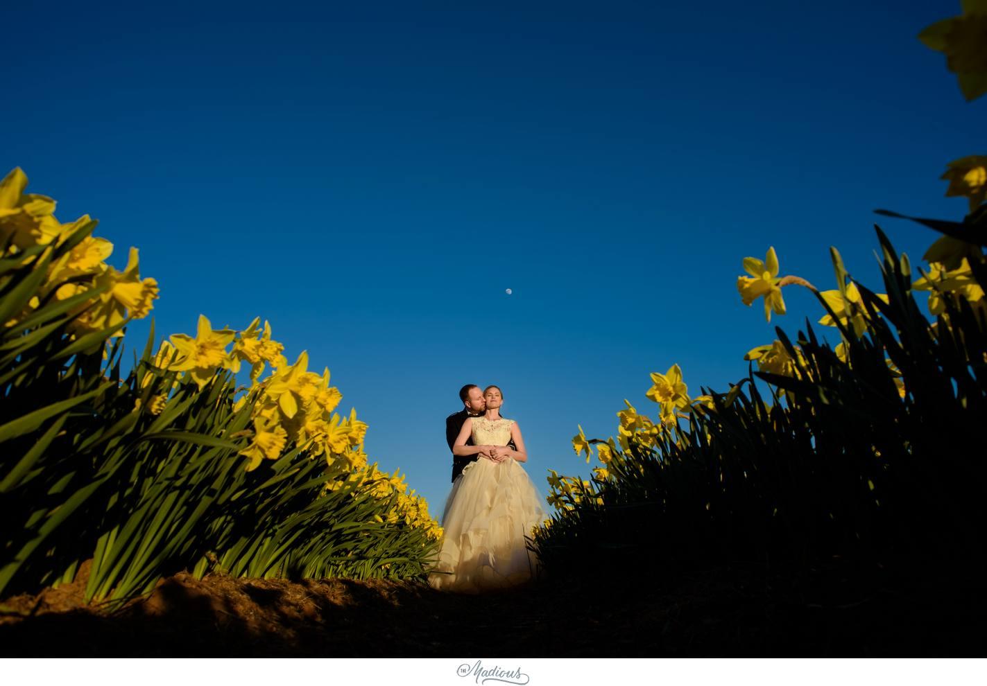 Balbegno_Dunnotar_Castle_Scottland_Wedding_56.jpg
