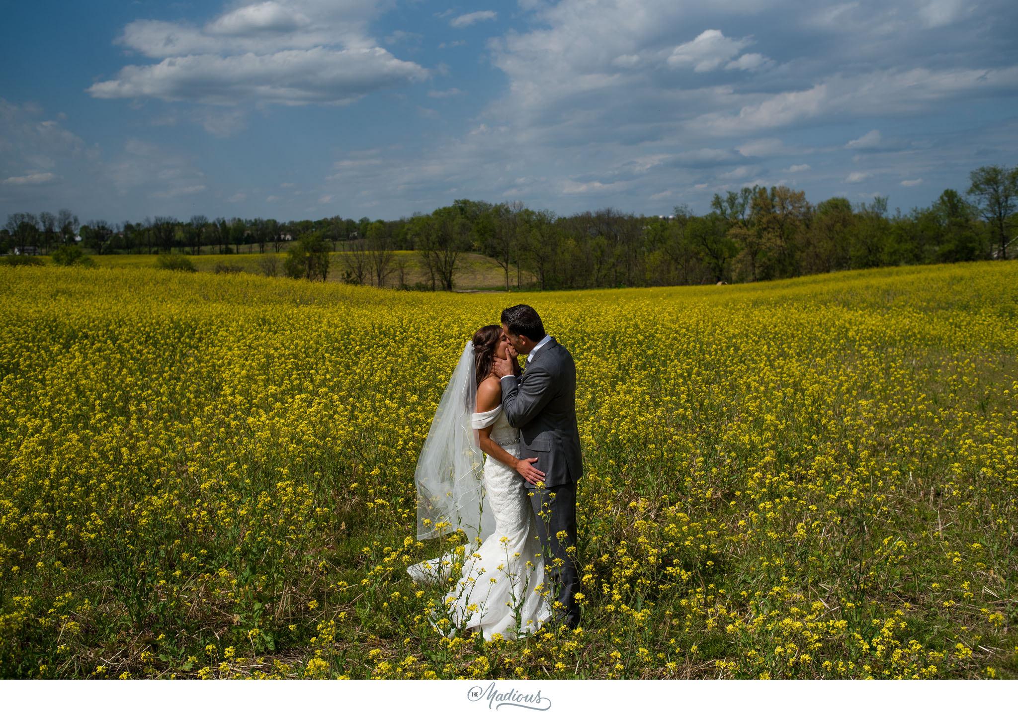 Ann Arbor Michigan Nixon Farms wedding_0029.JPG