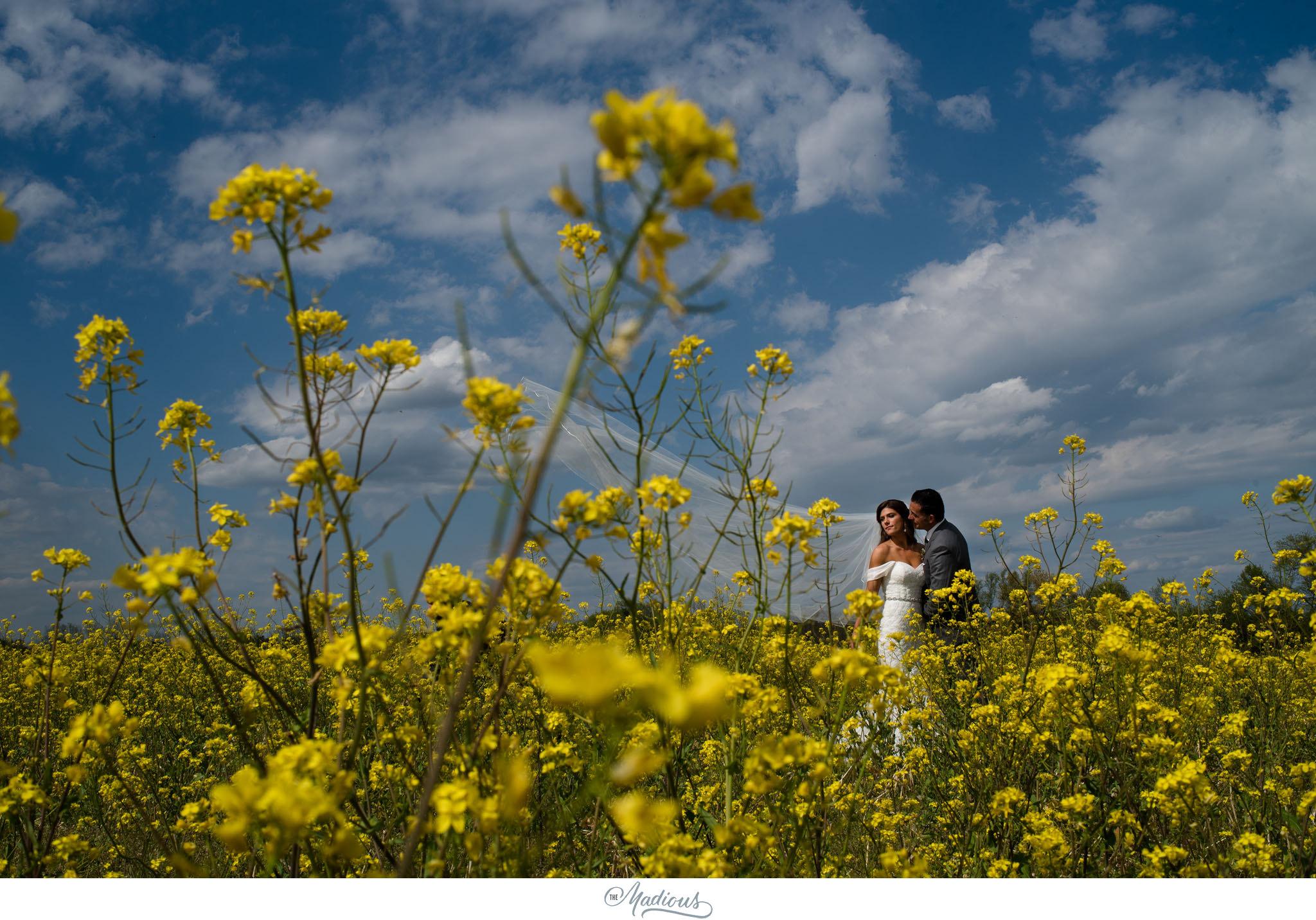 Ann Arbor Michigan Nixon Farms wedding_0030.JPG