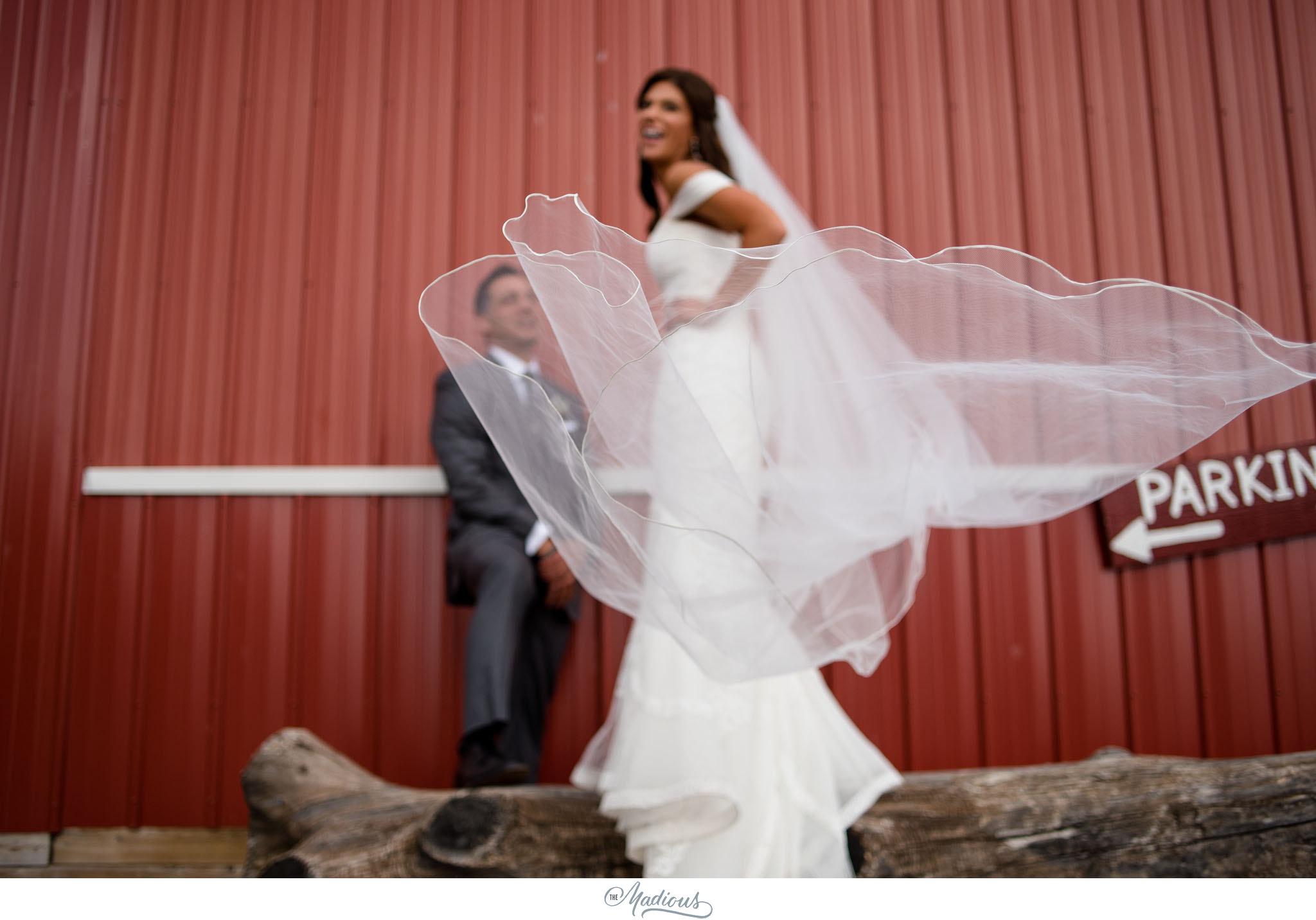 Ann Arbor Michigan Nixon Farms wedding_0033.JPG