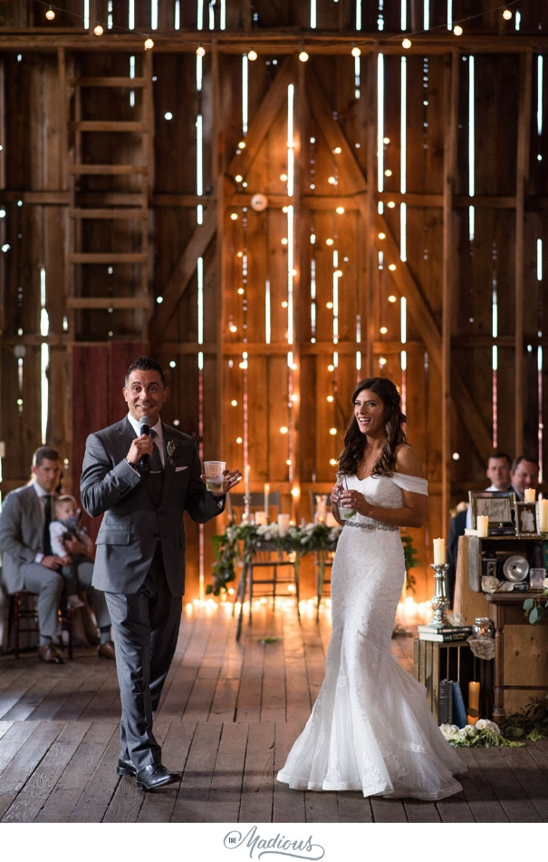Ann Arbor Michigan Nixon Farms wedding_0035.JPG