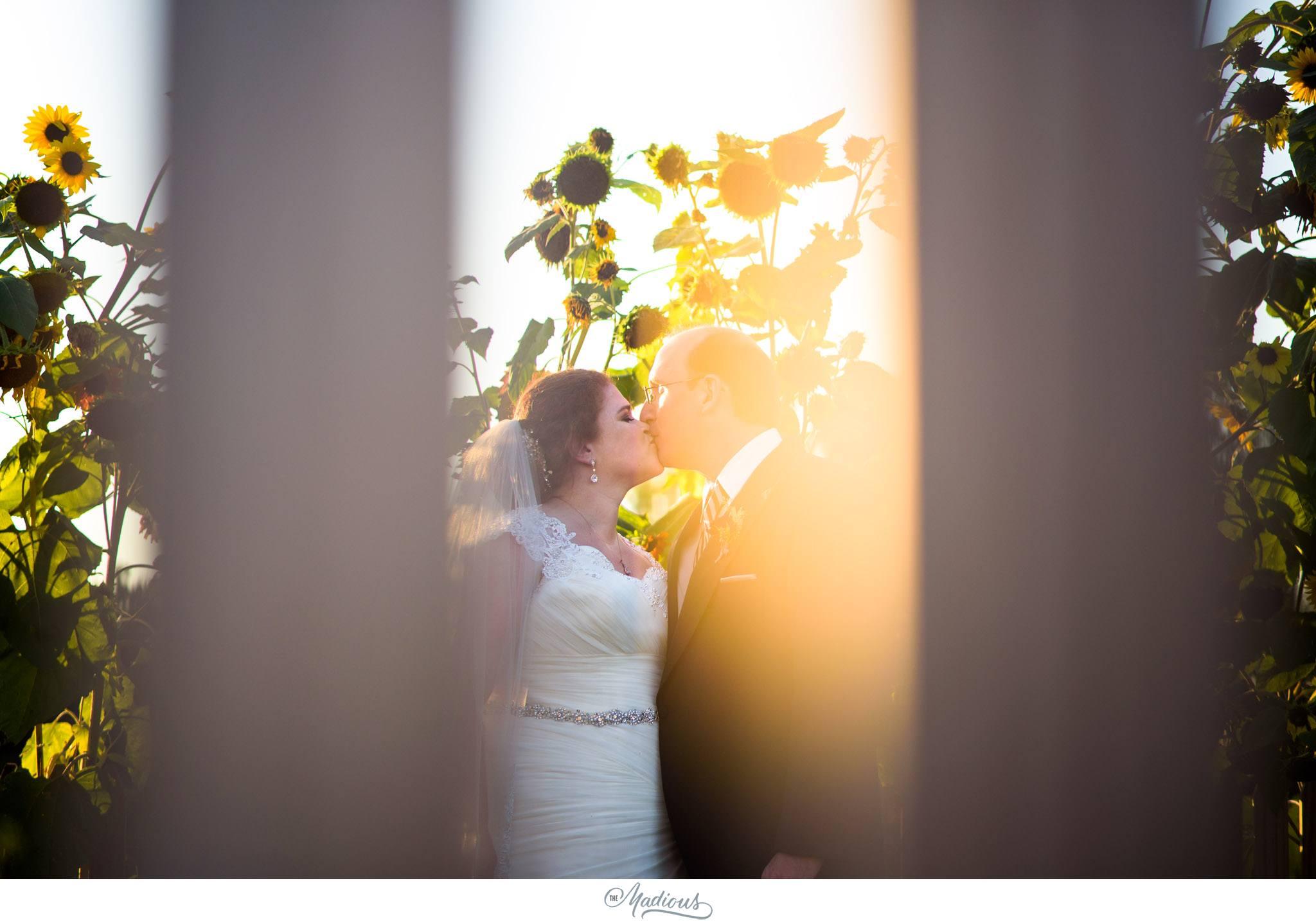 Monterre Vineyard Wedding Orefield, PA_020.JPG