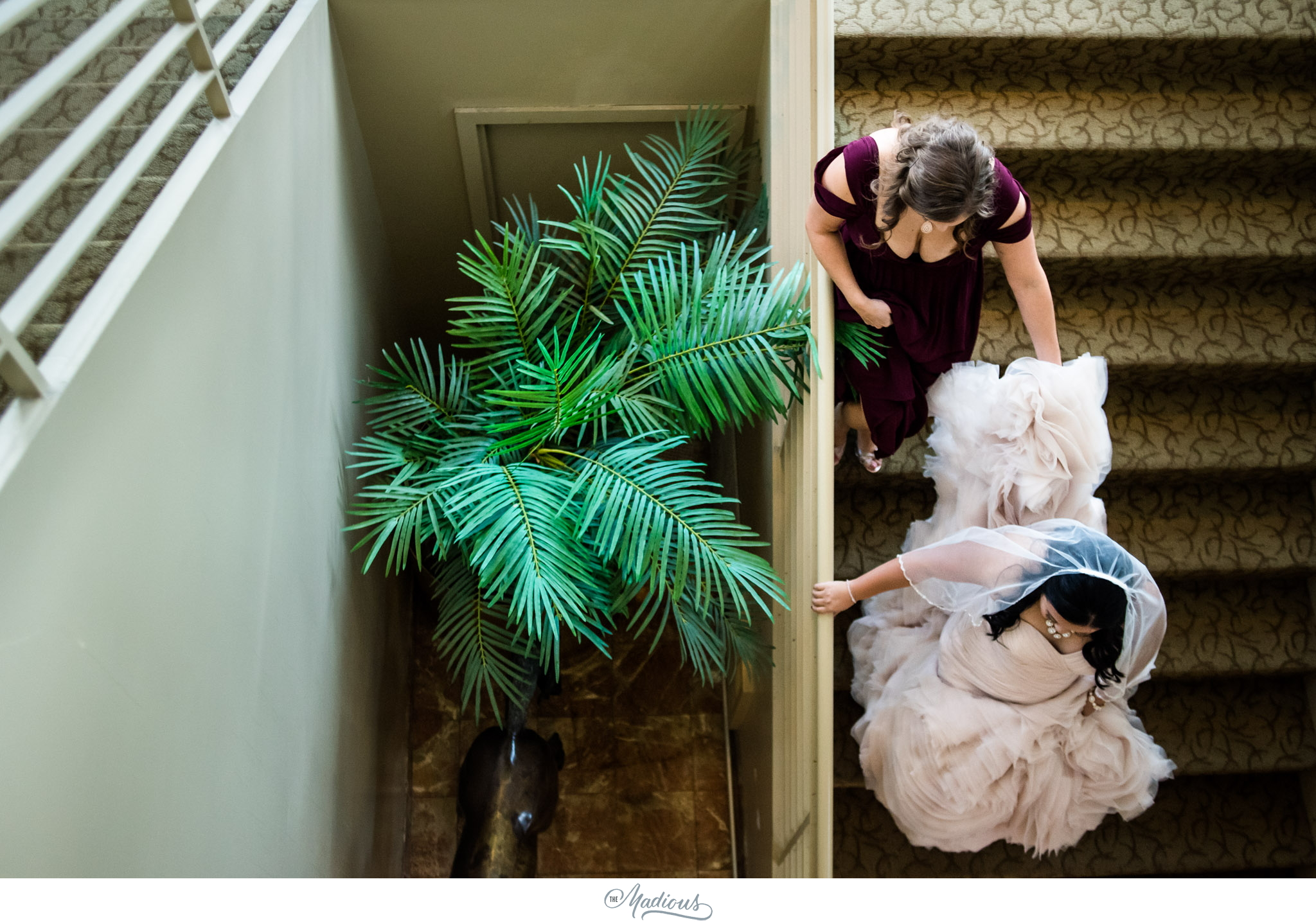 Tabrizis Wedding Baltimore_0016.jpg
