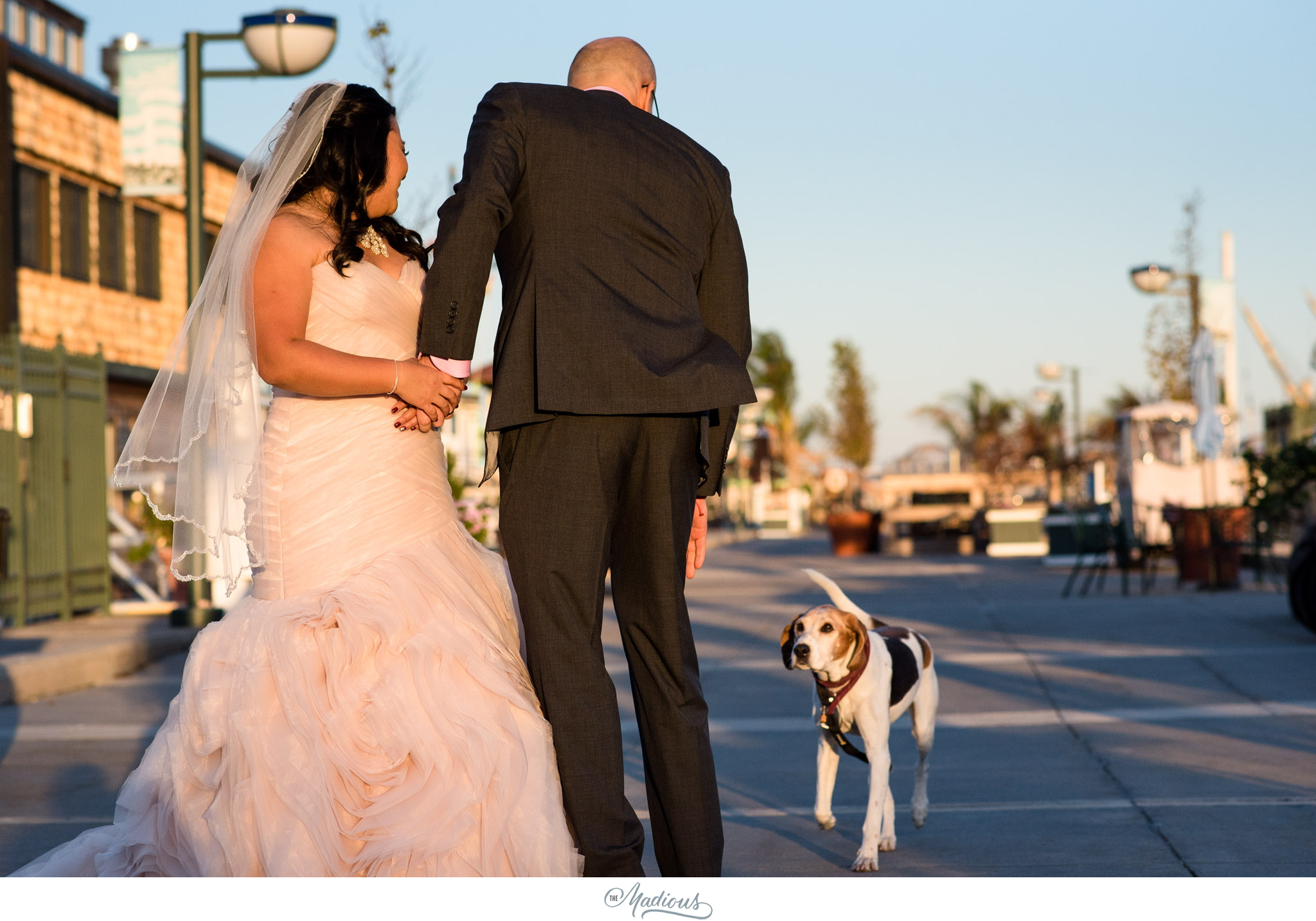 Tabrizis Wedding Baltimore_0034.jpg