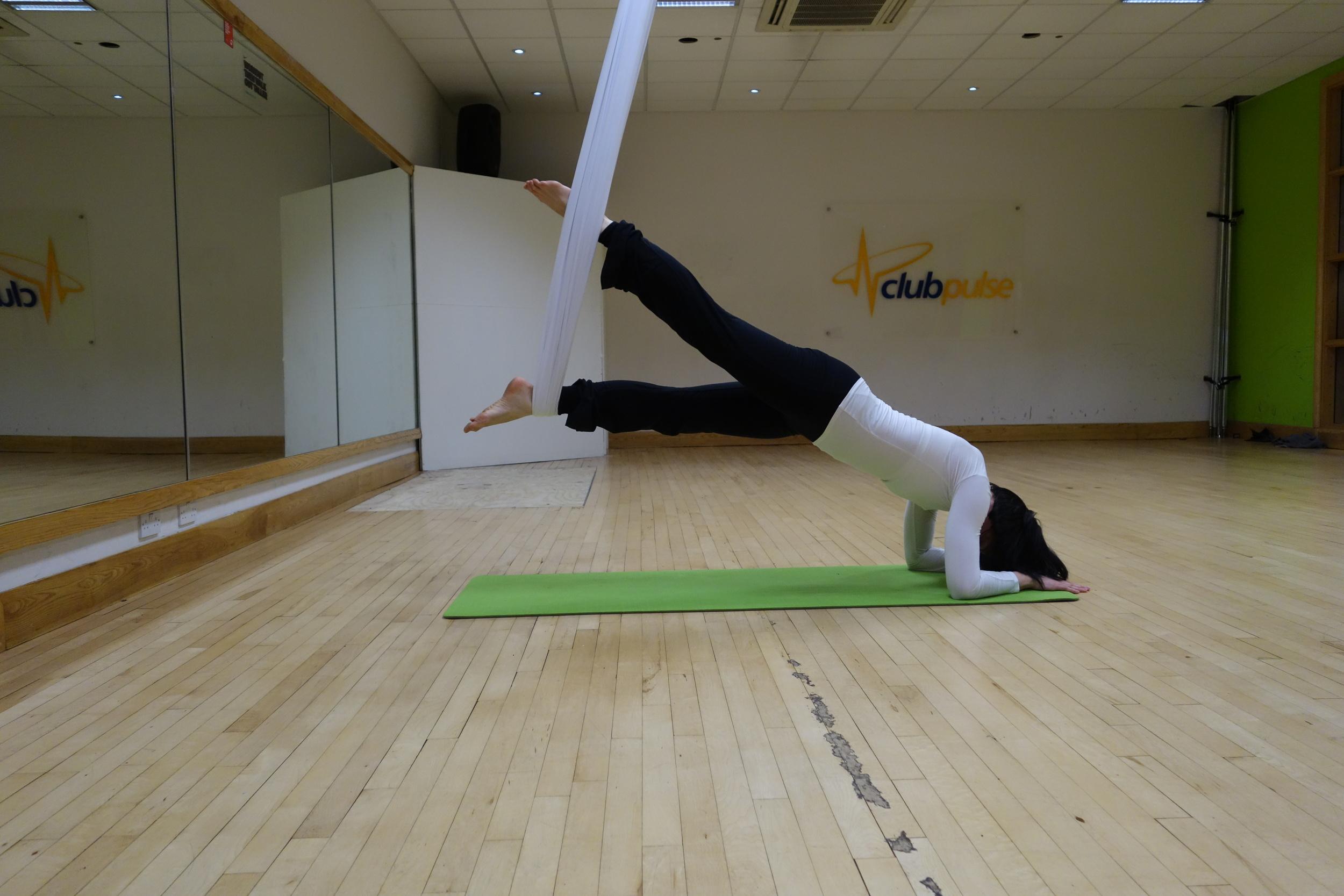 plank_forarm_leg.JPG