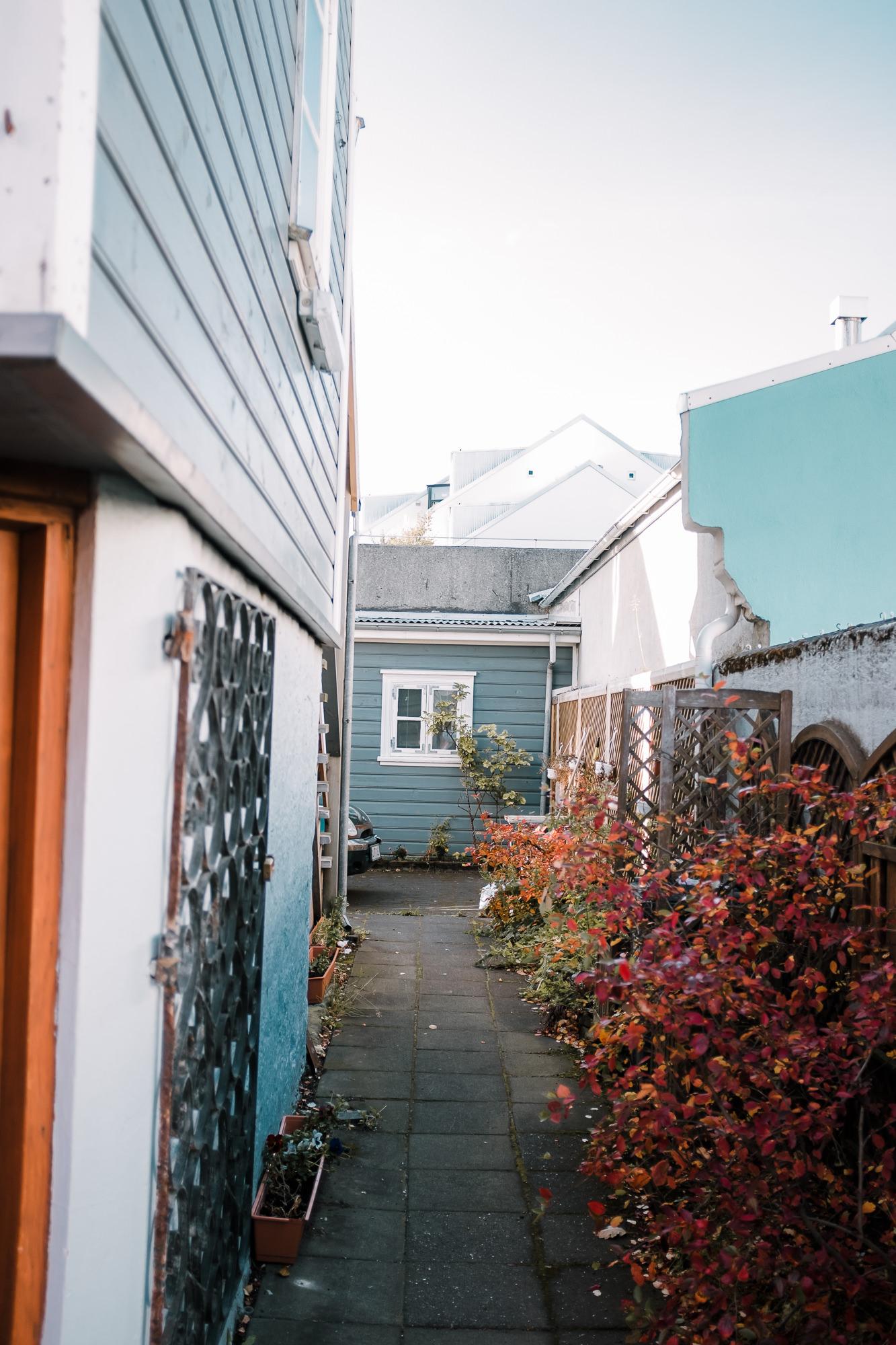 iceland.vik.reykjavik.elopement.©2018mileswittboyer-4.jpg