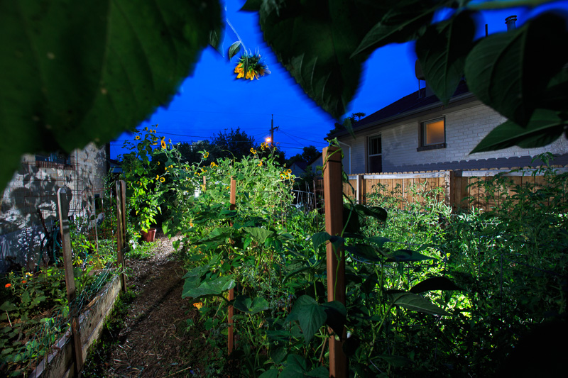 GROW_Staver_urban_garden_Denver_photographer_010.JPG