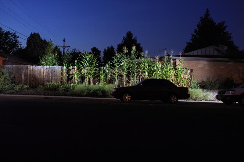 GROW_Staver_urban_garden_Denver_photographer_017.JPG