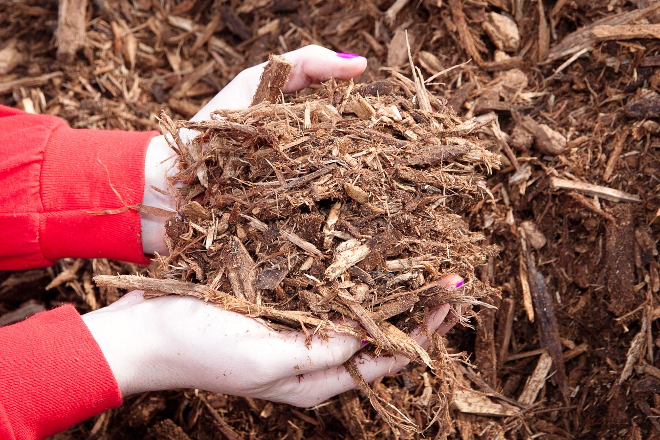 mulch-hardwood
