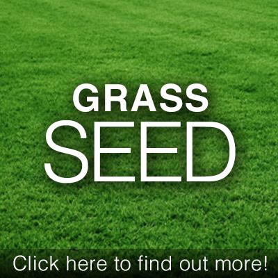 ad_GrassSeed.jpg