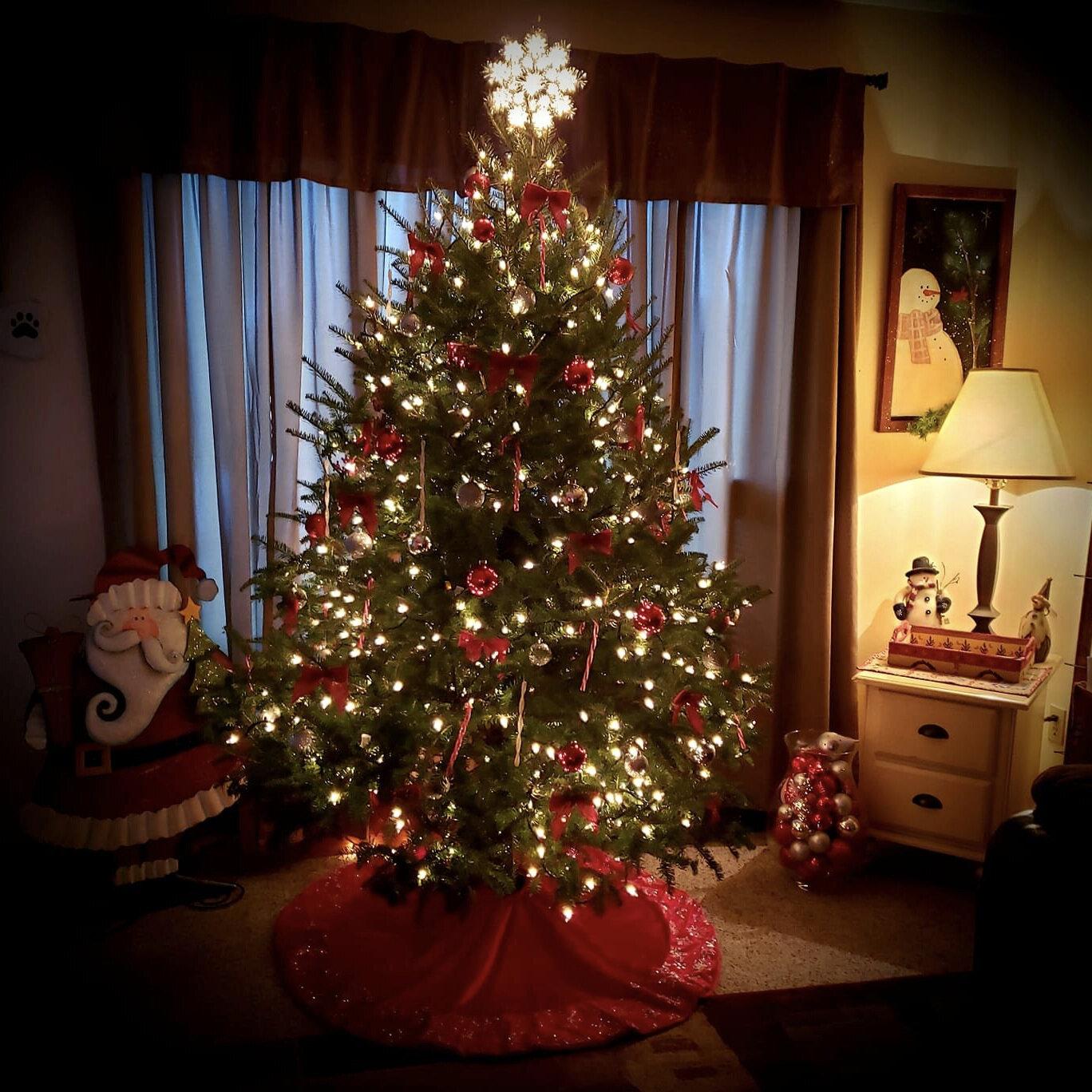 Christmas Trees Wreaths Dvorak Landscape Supply Llc